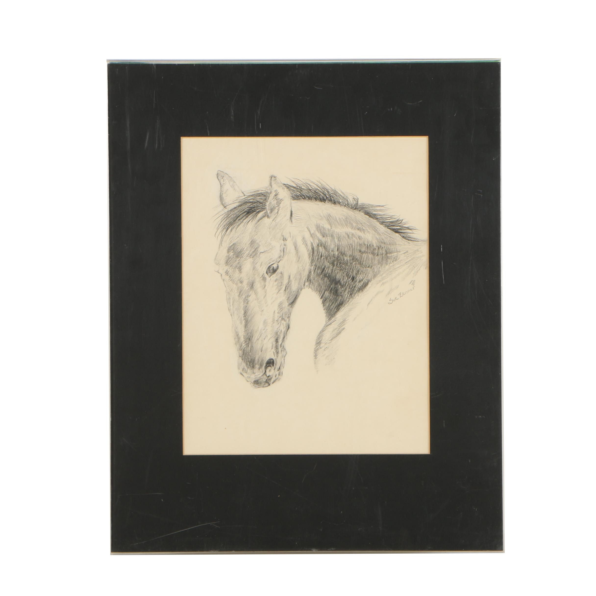 Sue Zanner Graphite Drawing of Horse