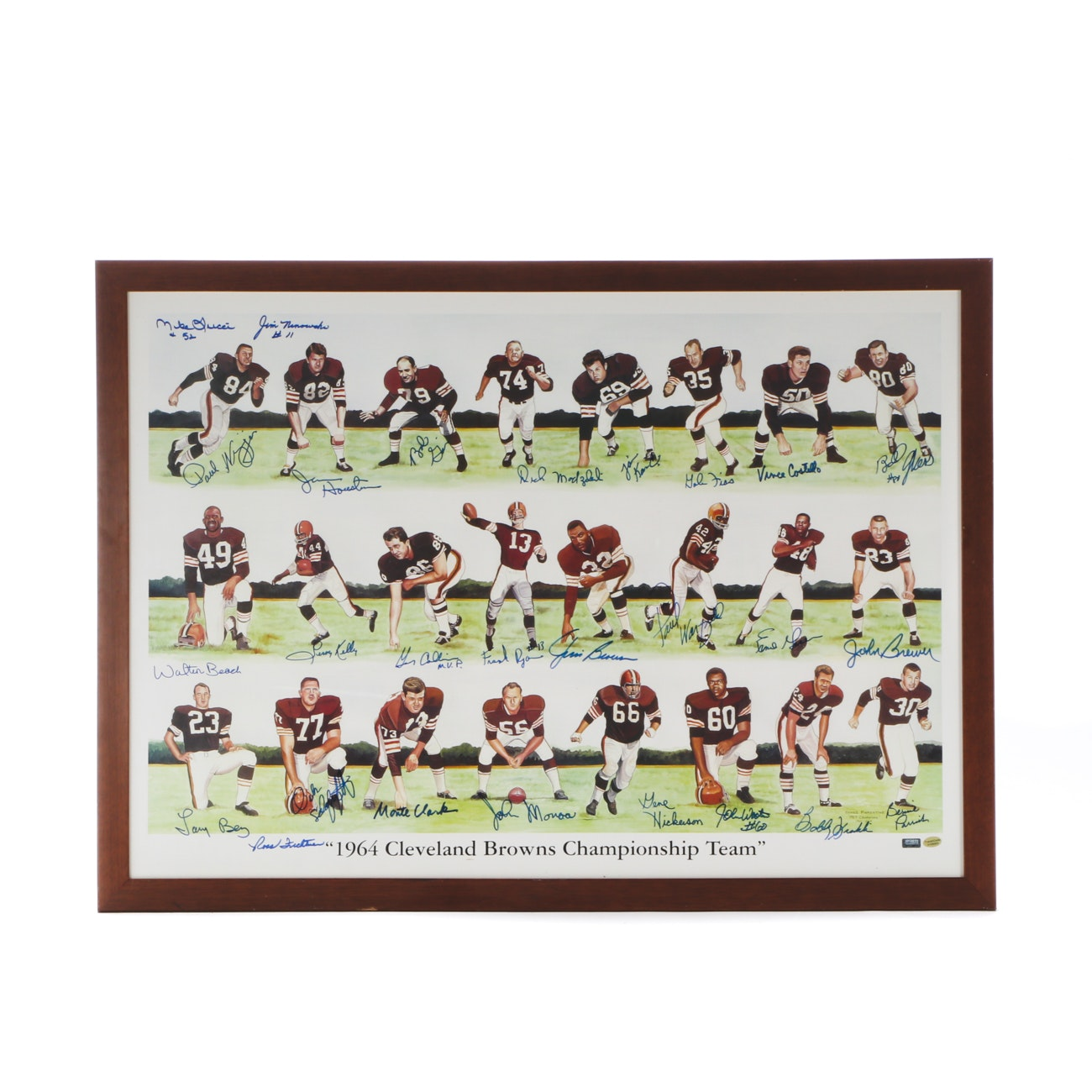 1964 Cleveland Browns Signed Print  COA