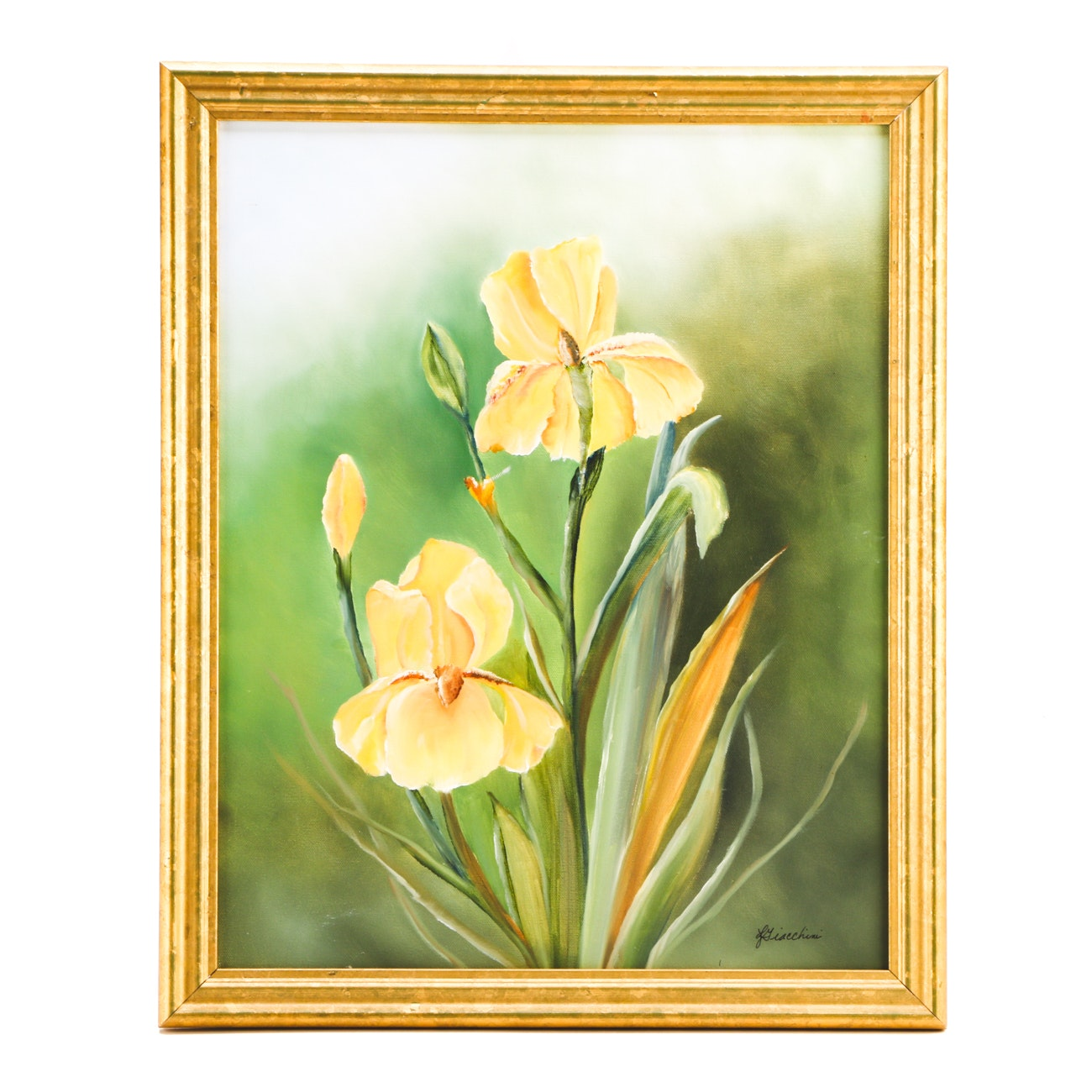 Laura Giacchini Acrylic Painting on Canvas of Yellow Iris Flowers