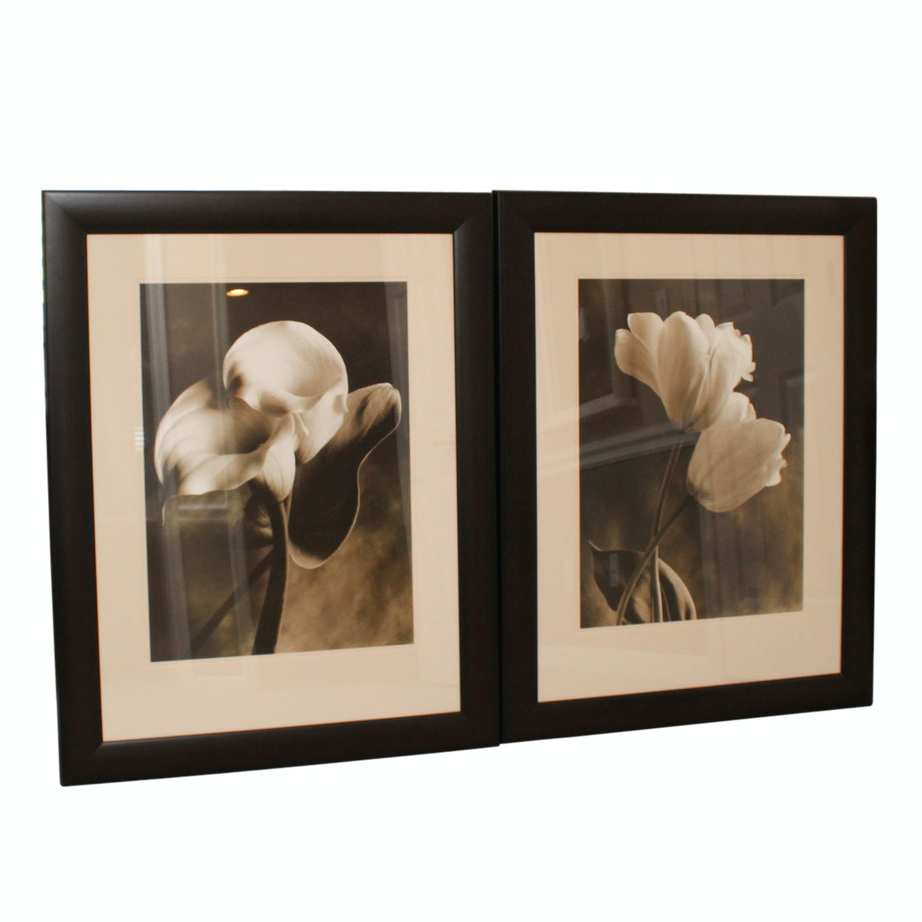 Pair of Black and White Floral Photographs