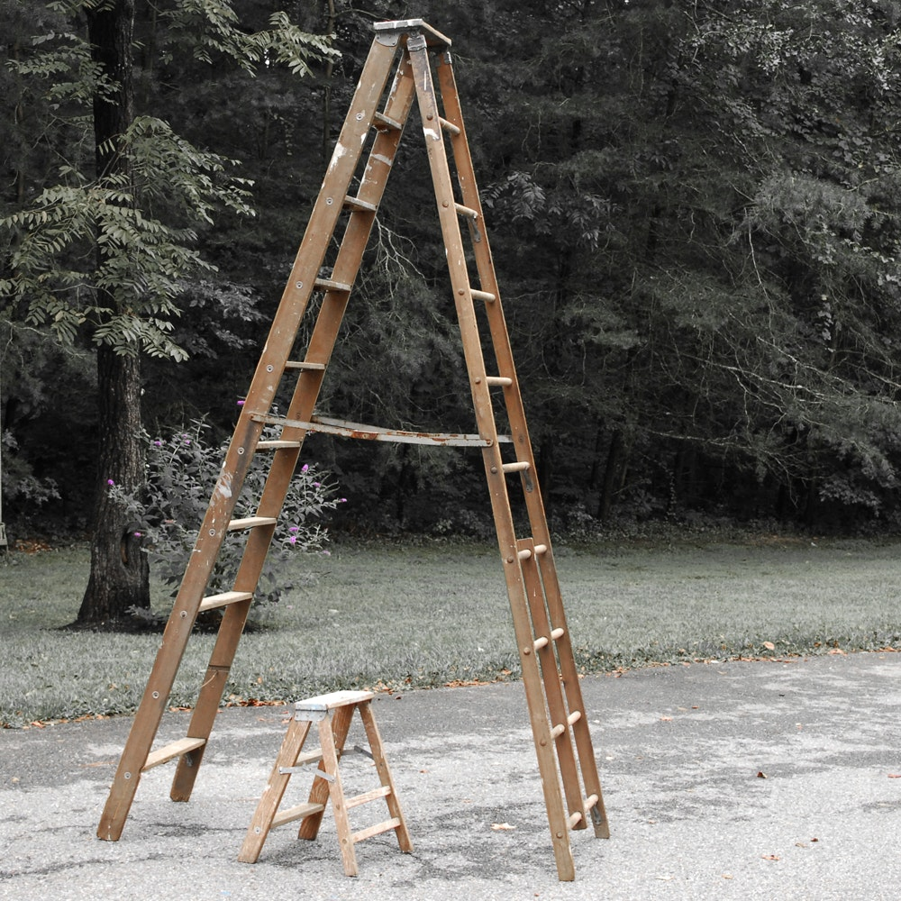 Ladder and Step Ladder
