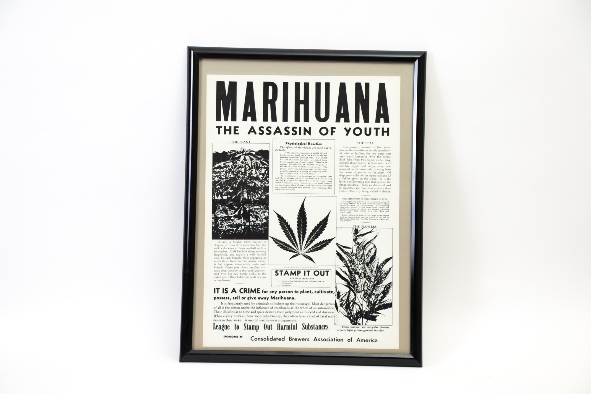 """Vintage Consolidated Brewers Association of America """"Marihuana"""" Poster"""