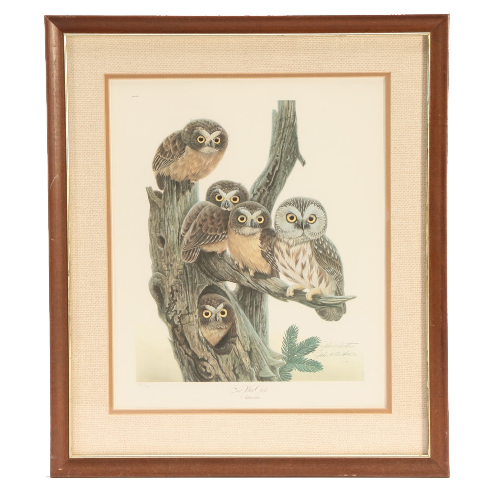 """John Ruthven Limited Edition Offset Lithograph """"Saw Whet Owls"""""""