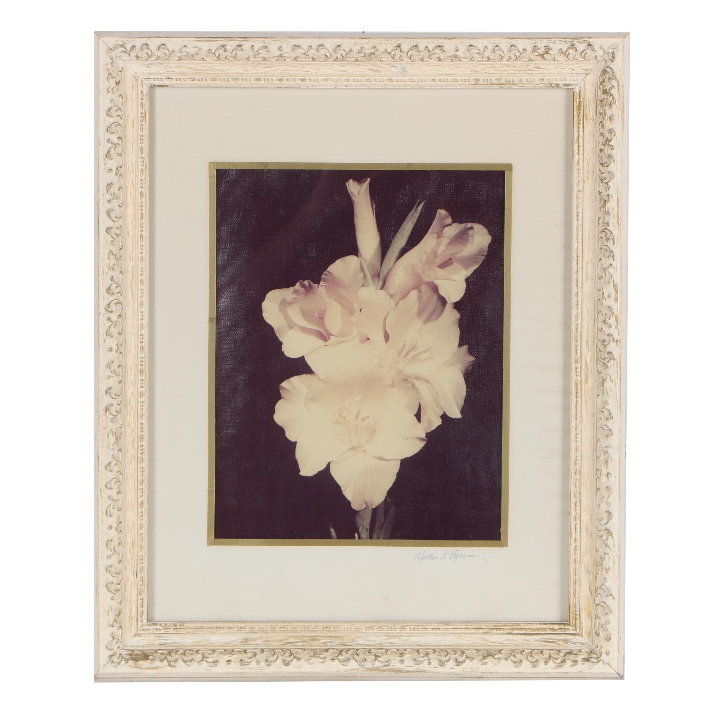 Walter L. Greene Chromogenic Color Print Photograph