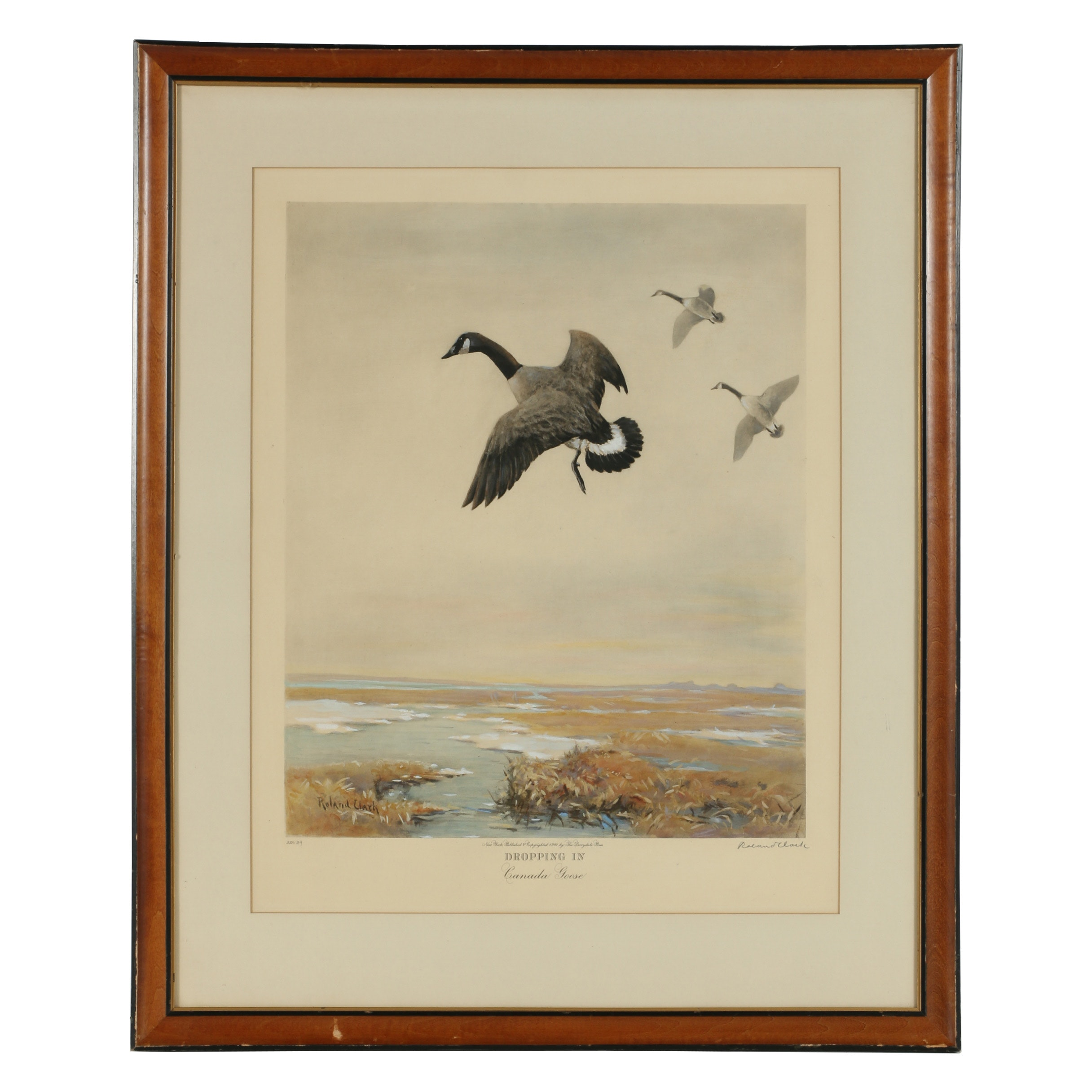 """Roland Clark Hand-Painted Photogravure """"Dropping In - Canada Goose"""""""