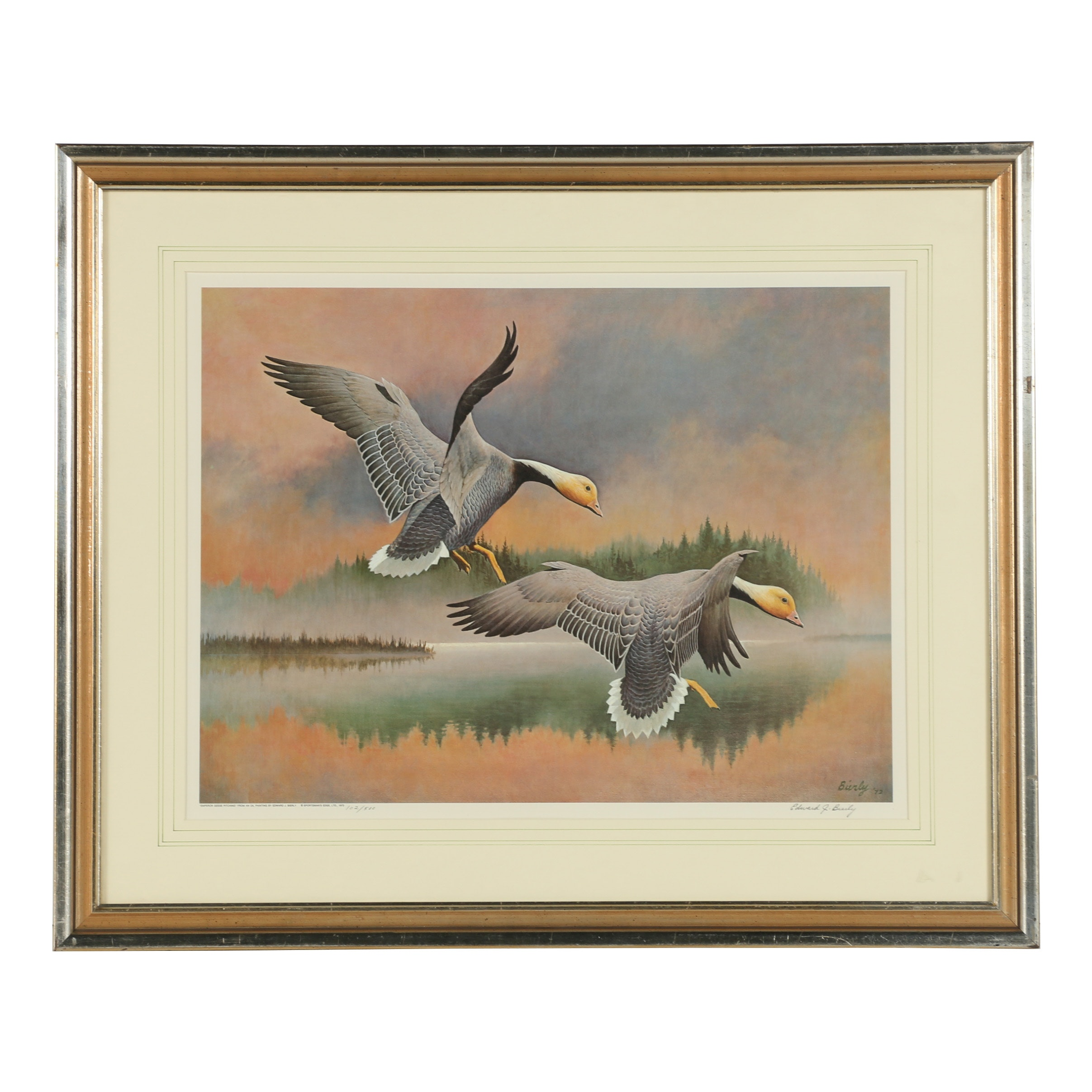 "Edward J. Bierly Offset Lithograph ""Emperor Geese Pitching"""