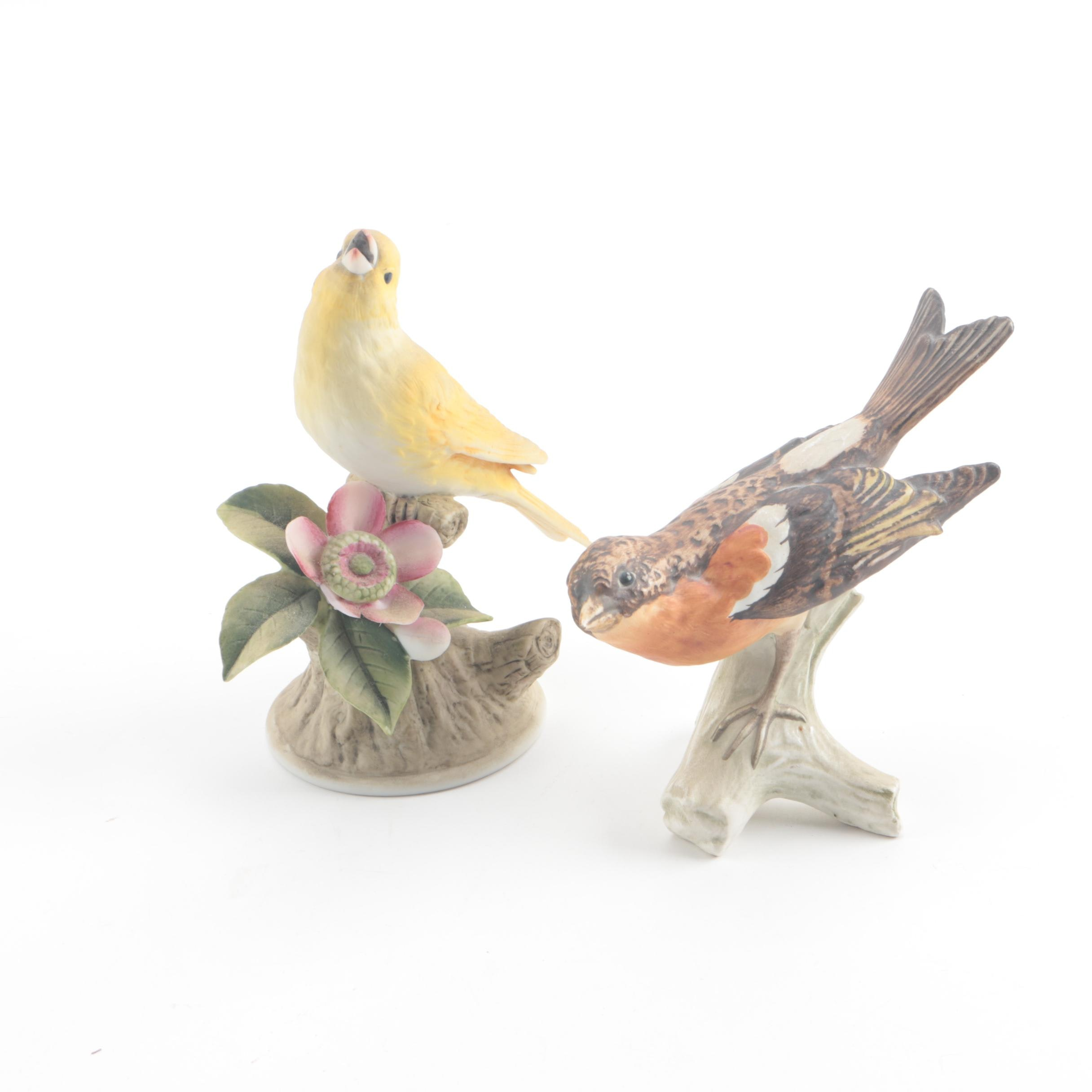 Vintage Goebel and Andrea by Sadek Porcelain Bird Figurines