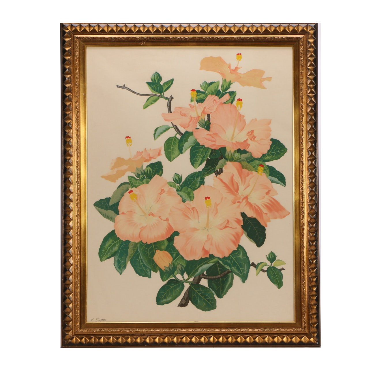 """Vintage Lithograph after Lloyd Sexton """"Pretty Pink Hibiscus Flower"""""""