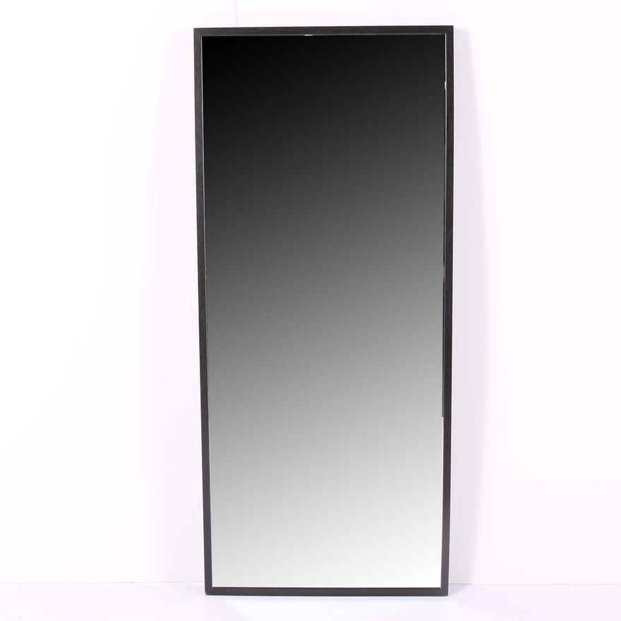 Contemporary Full Length Wall Mount Mirror
