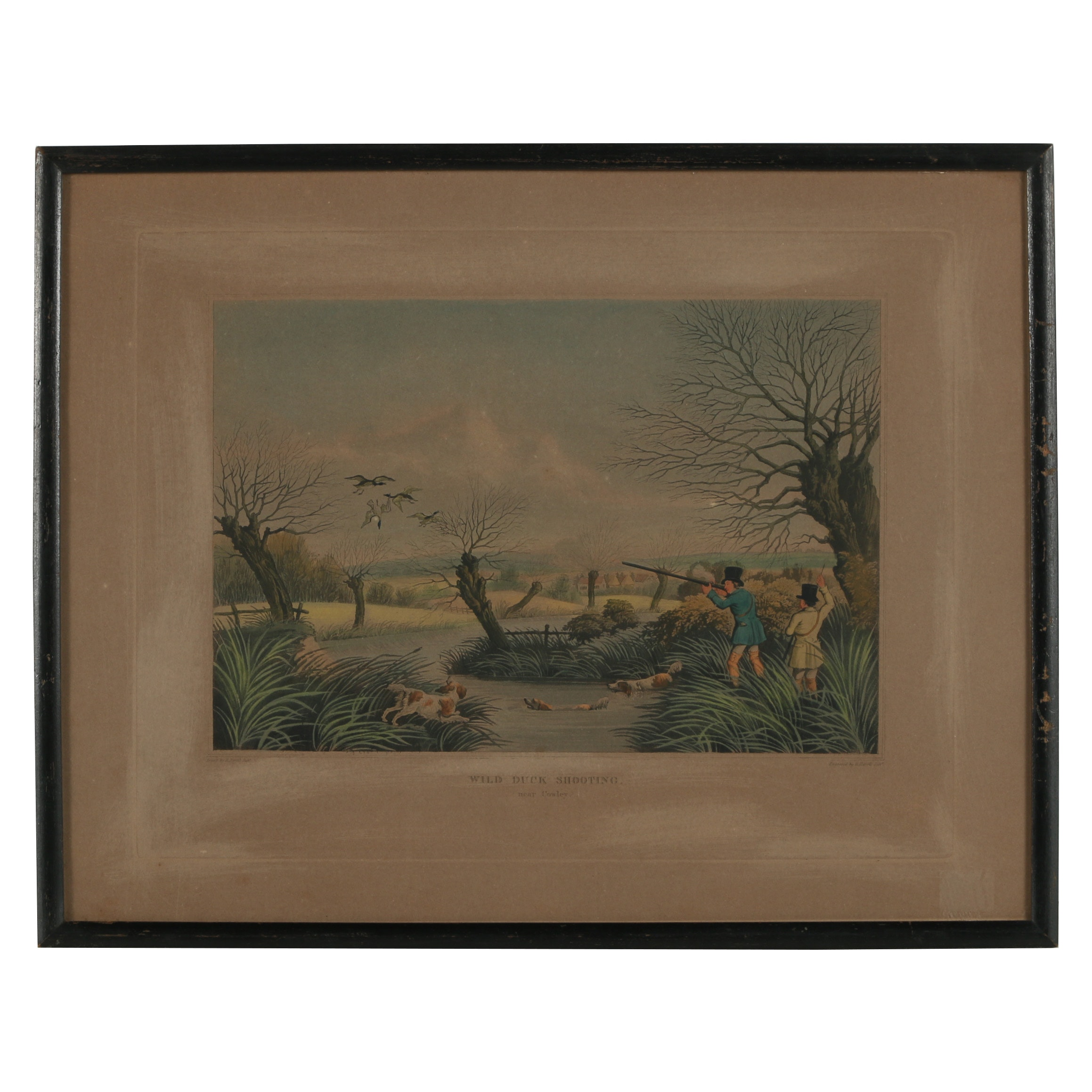 Hand-Colored Etching with Aquatint after Robert Havell Jr.