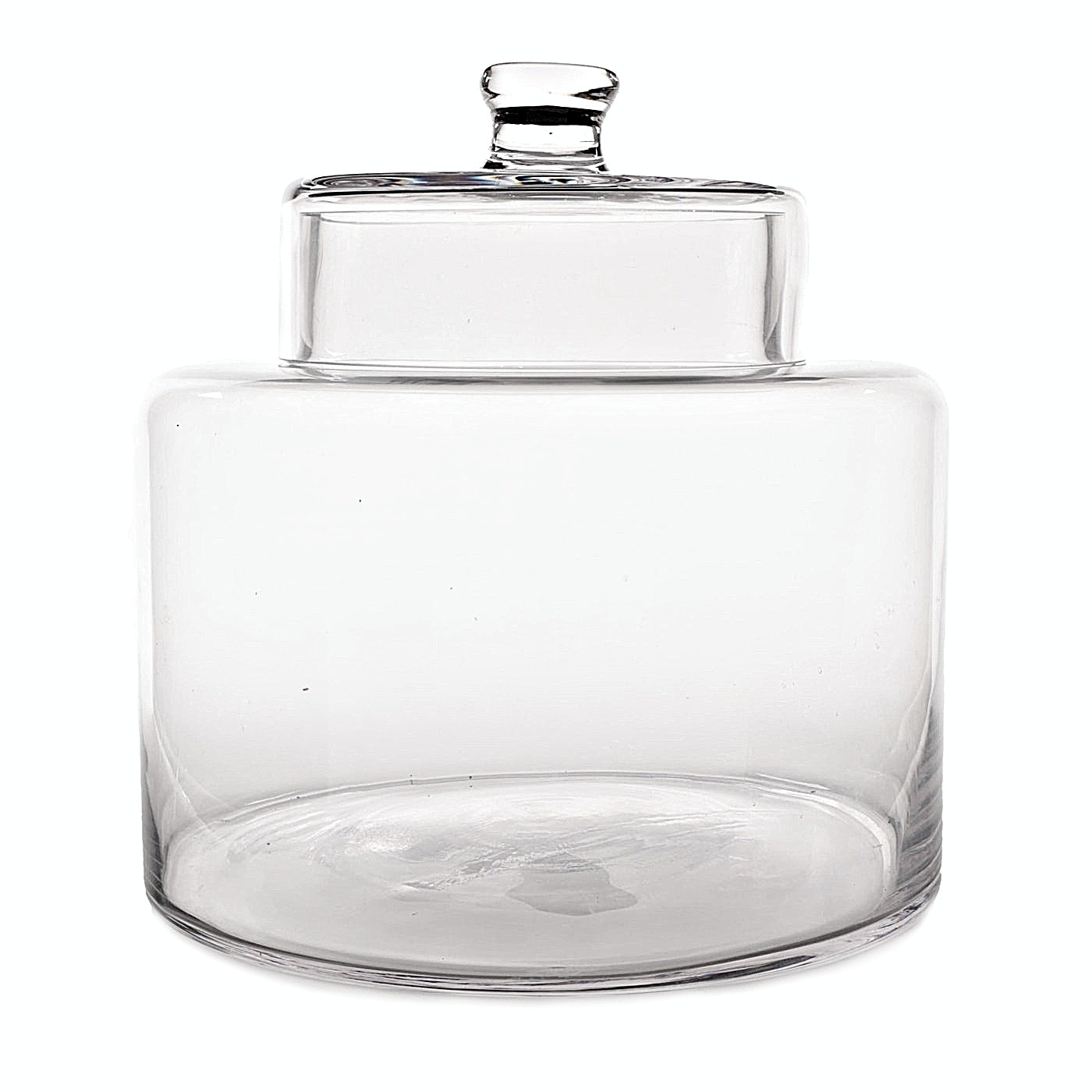 Extra Large Lidded Glass Cookie Jar