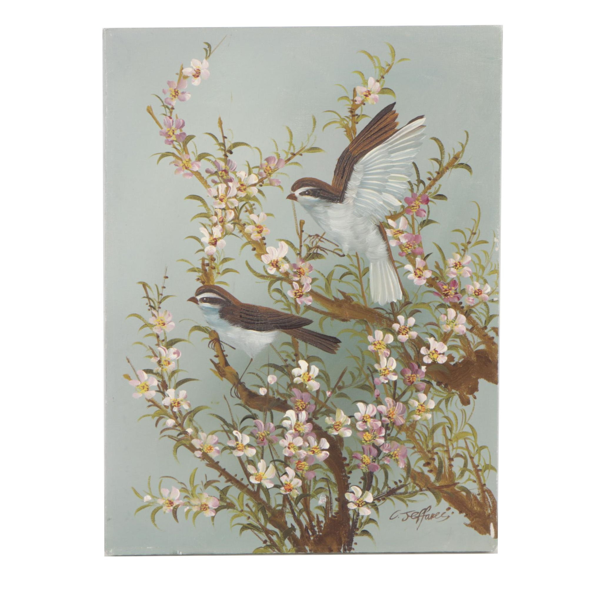 Birds in Cherry Blossoms Oil Painting by C. Jeffares