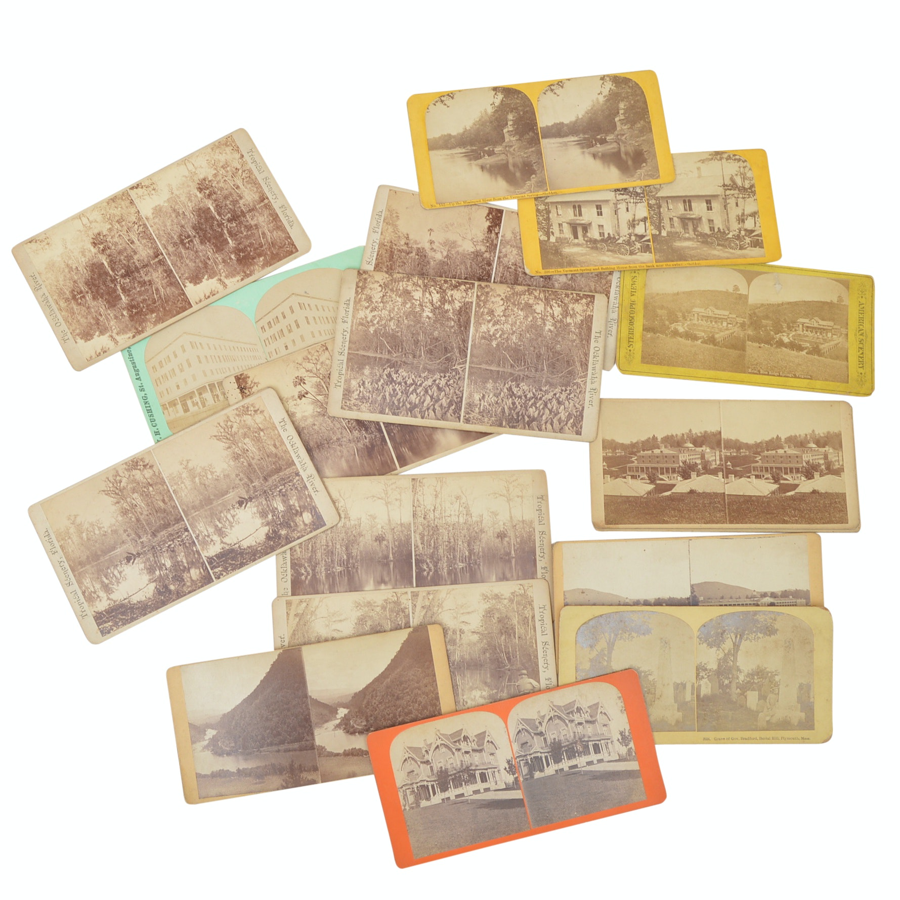 19 Early 20th Century Stereoscopic Cards with Florida Landscapes, Greenbrier