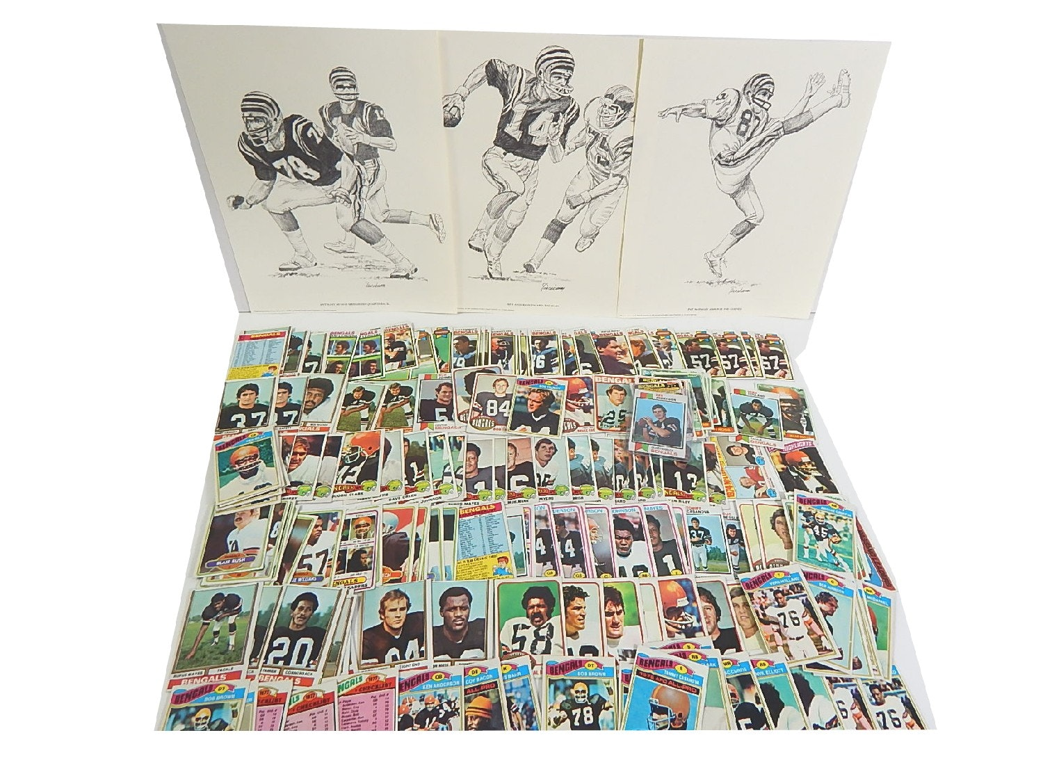 Vintage Cincinnati Bengals Card and Print Collection with 1973 K. Anderson RC