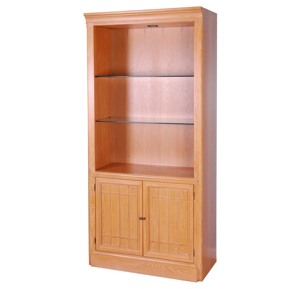 Contemporary Illuminated Bookcase Cabinet