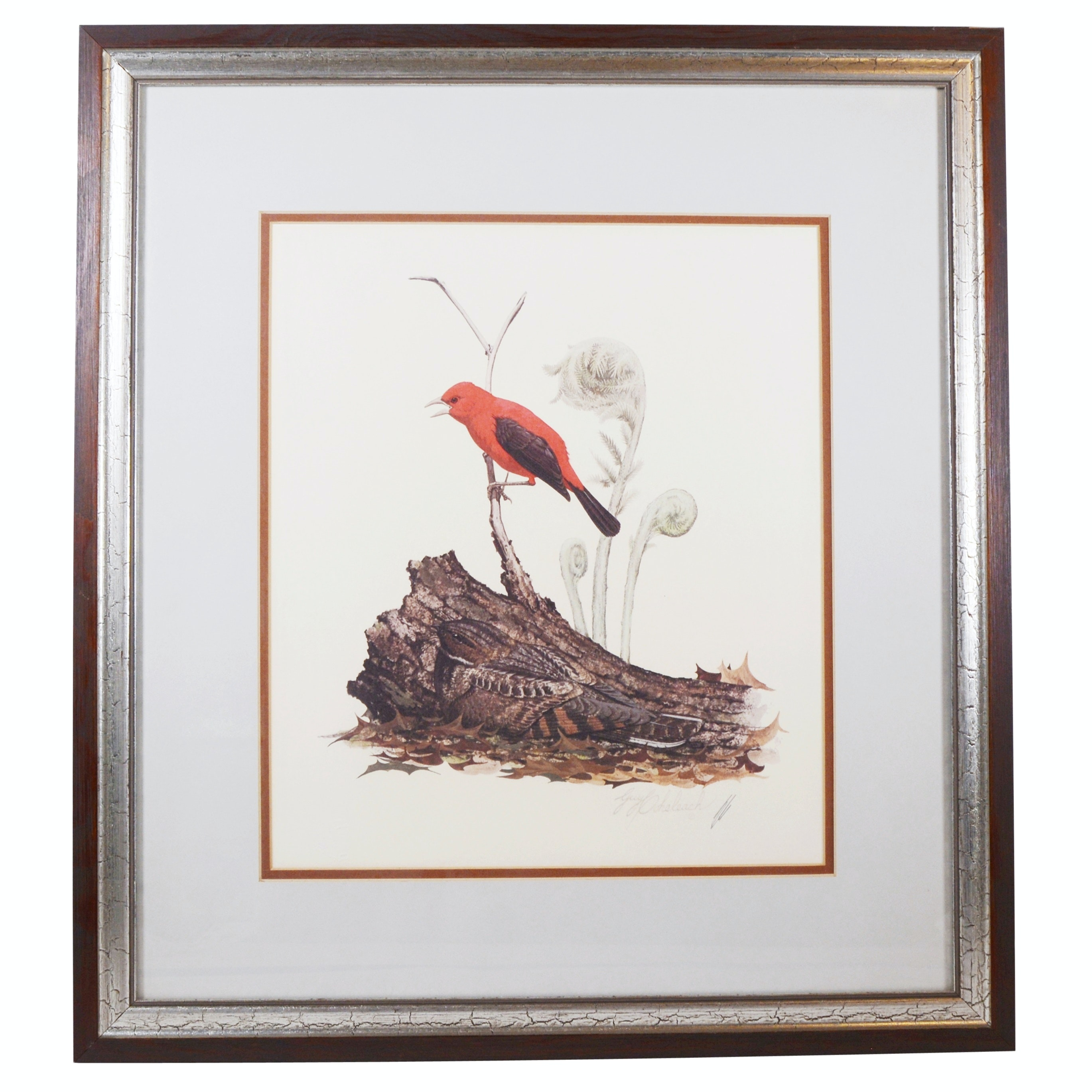 "Guy Coheleach Offset Lithograph ""Scarlet Tanager and Whip-Poor-Will"""