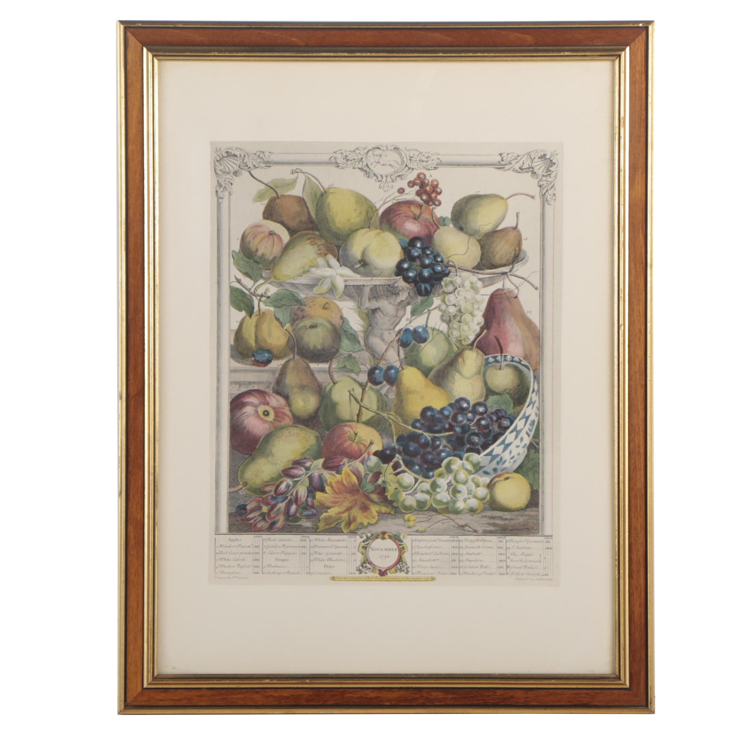 """Hand-Colored Lithograph after Engraving """"November, From Twelve Months of Fruits"""""""