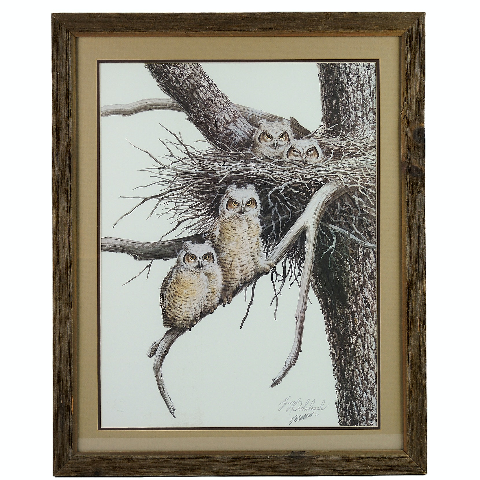 "Guy Coheleach Signed Offset Lithographs ""Young Great Horned Owls"""