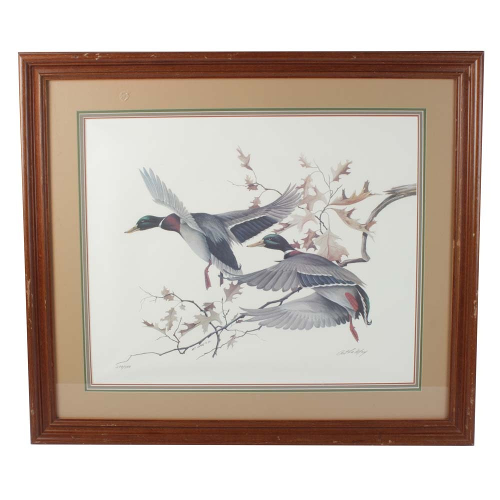 Art Lamay Limited Edition Offset Lithograph