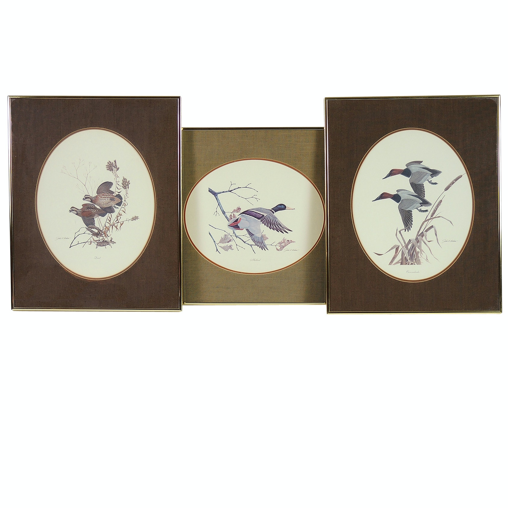 John A. Ruthven Offset Lithograph Prints of Game Birds