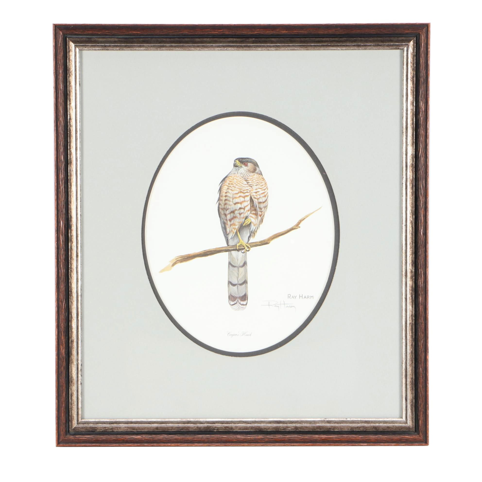 """Ray Harm Offset Lithograph Print """"Cooper's Hawk"""""""