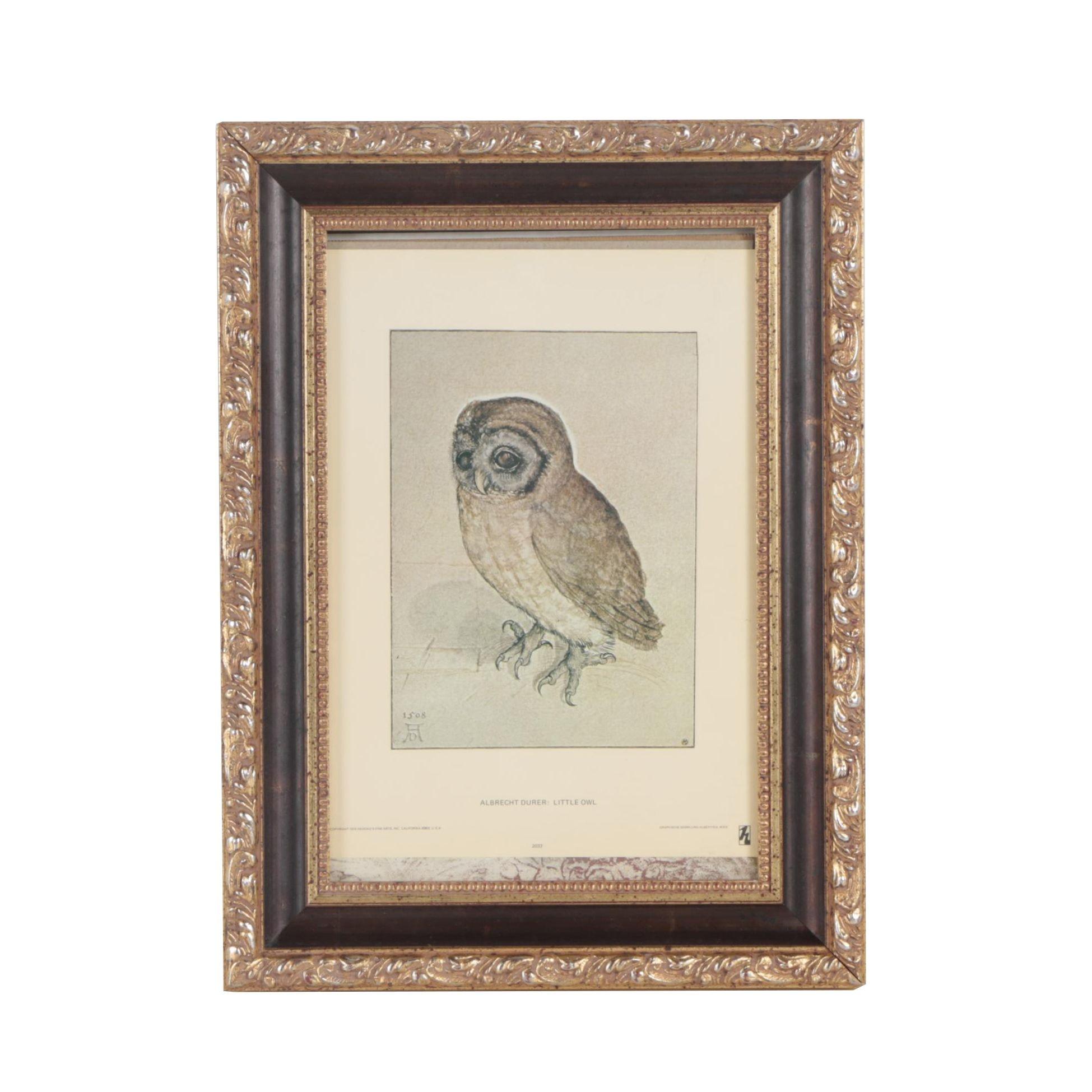"""Offset Lithograph after Albrecht Durer """"Little Owl"""""""