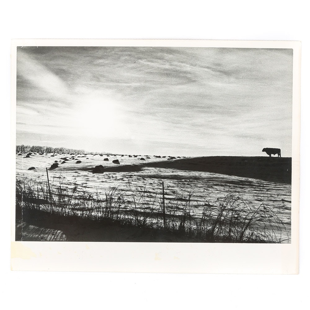 "Will Hess Photograph ""Winter on the Plains Lawrence, Kansas"""