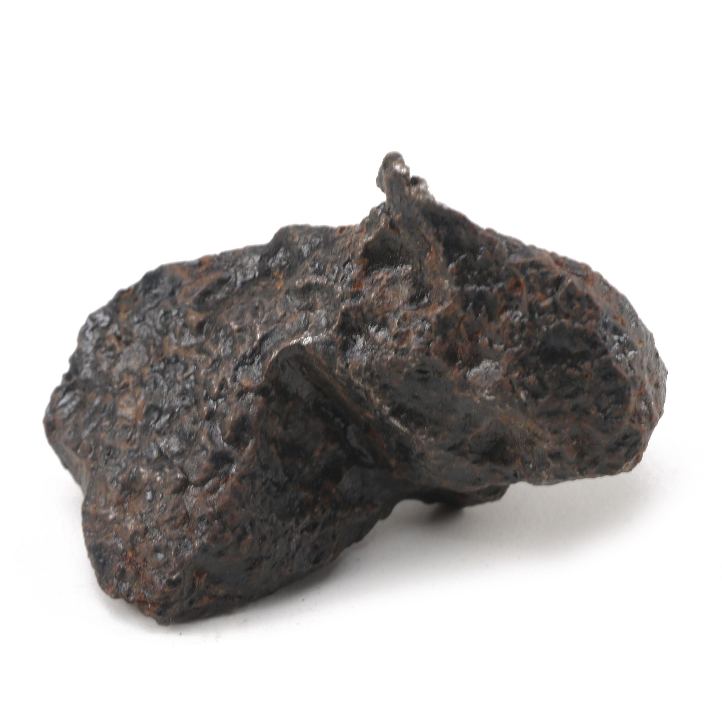 Iron Meteorite Specimen from Chaco Gualamba, Argentina