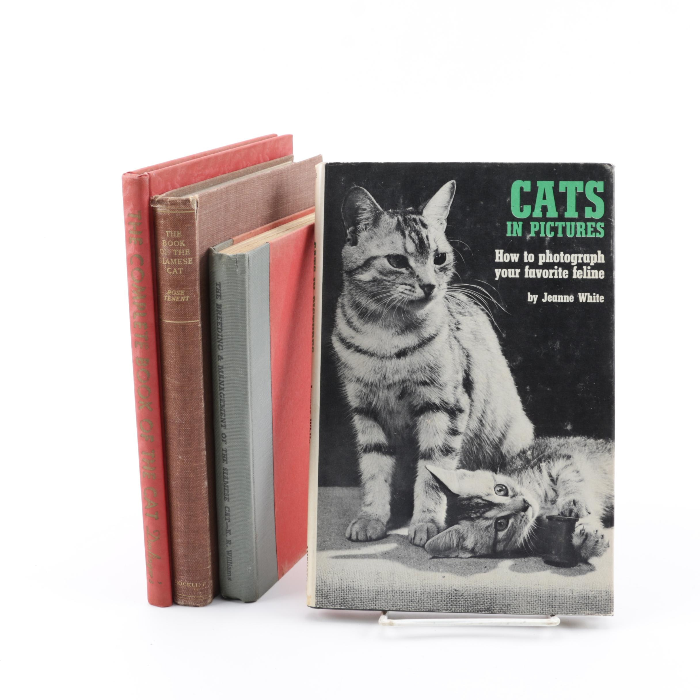 "1965 ""Cats in Pictures"" and Other Books on Cats"