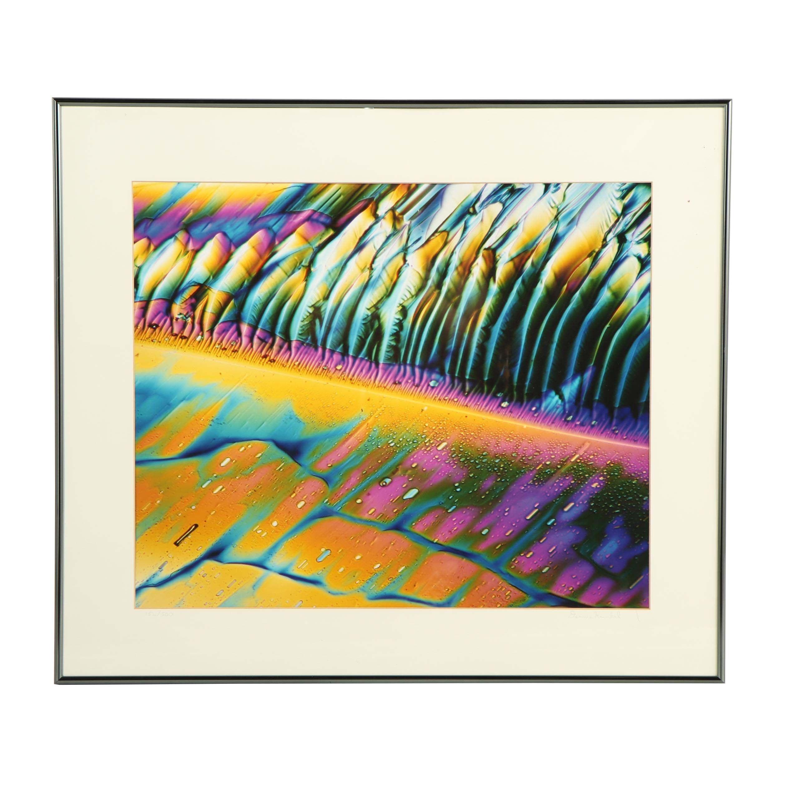 "Dennis Kunkel Microscopic Color Photograph ""Starstreams"""