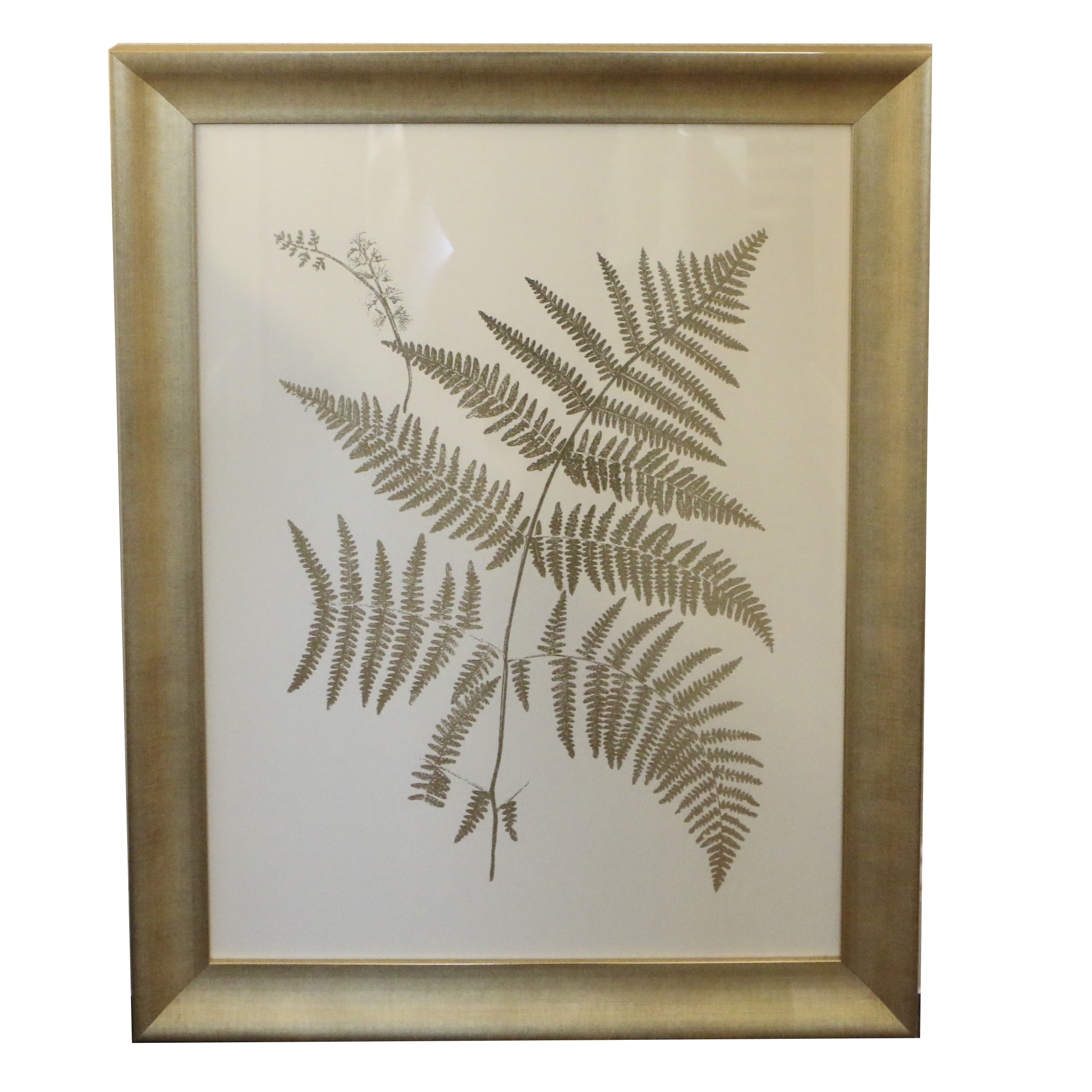 "Paragon Digital Print ""Gold Foil Ferns I"""