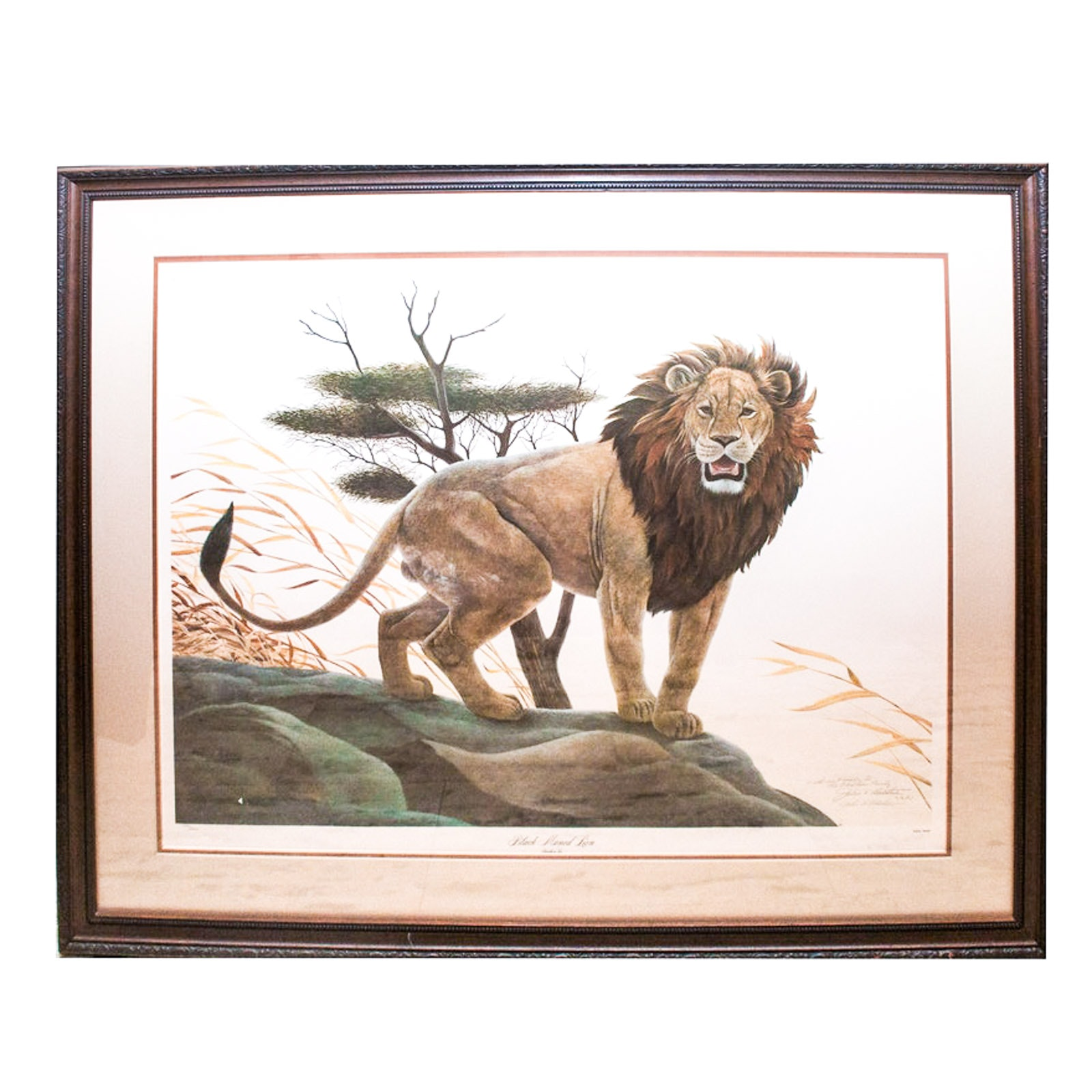 "John Ruthven Limited Edition Offset Lithograph ""Black Maned Lion"""