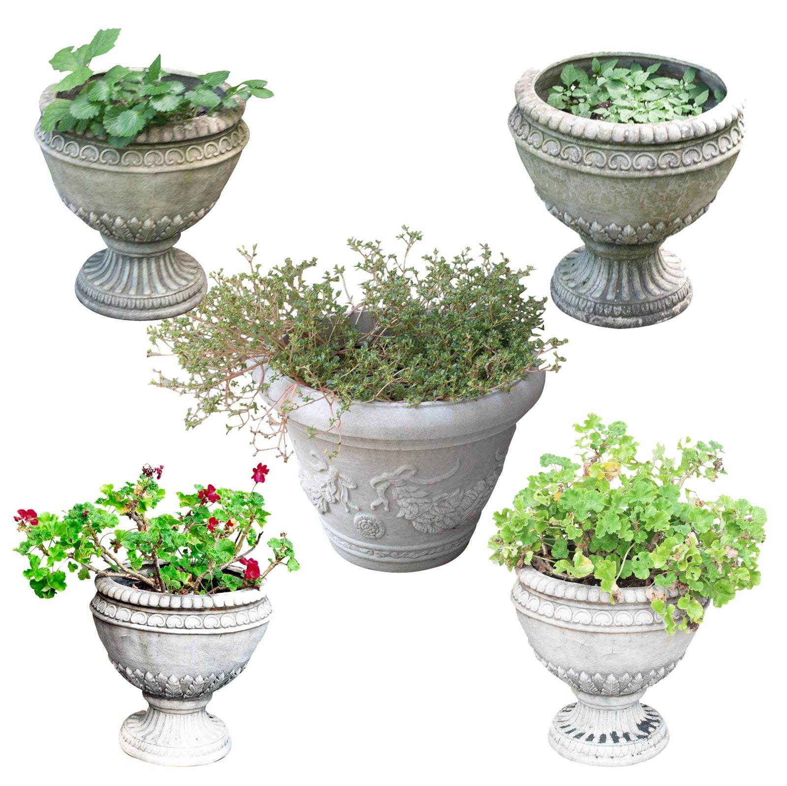 Five Outdoor Planters