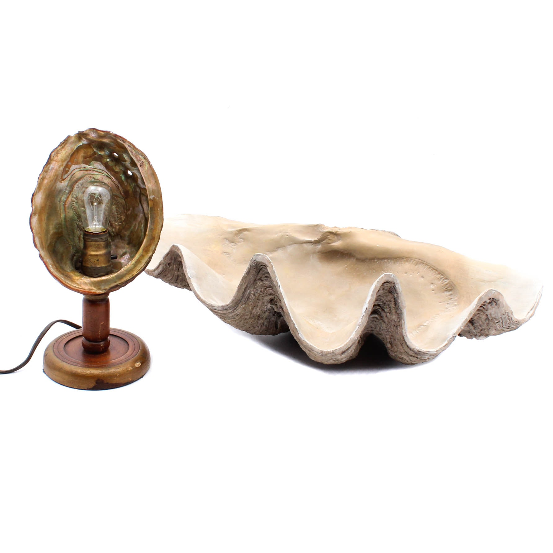 Circa 1940s Shell Lamp and Large Clam Casting