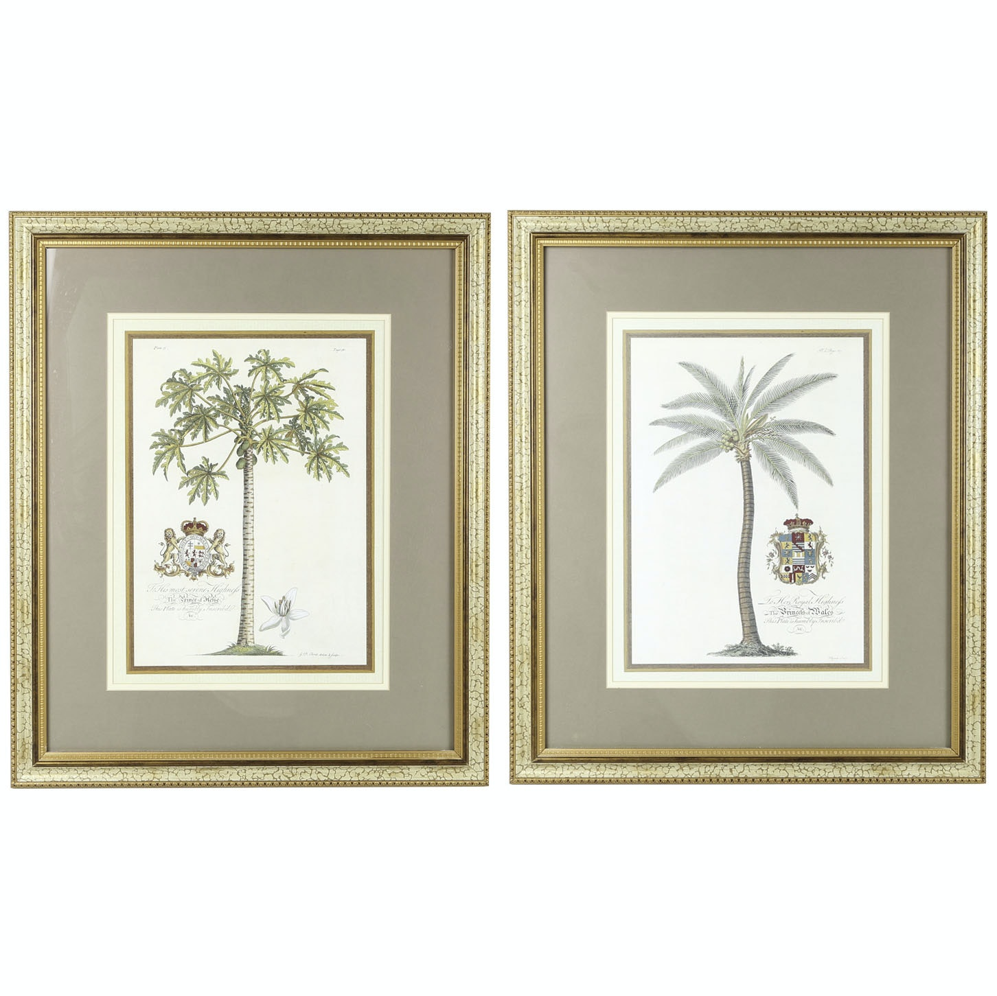 """Offset Lithographs """"Papaya Palm"""" and """"Coconut Palm"""""""