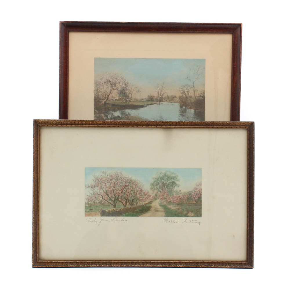 Wallace Nutting Hand-Colored Albumen Photographs