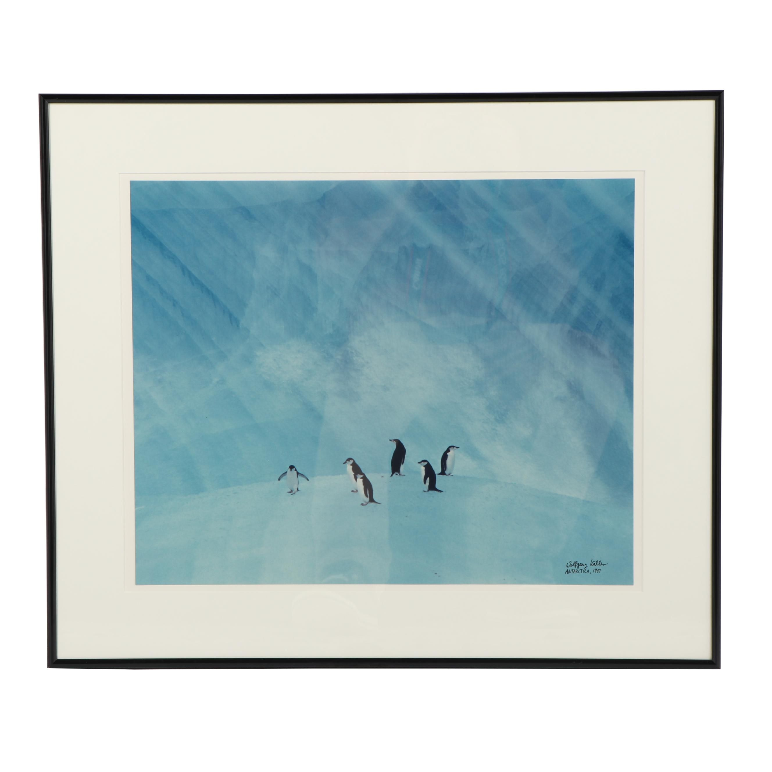 "Wolfgang Kaehler Color Photograph ""Antarctica 1981"""