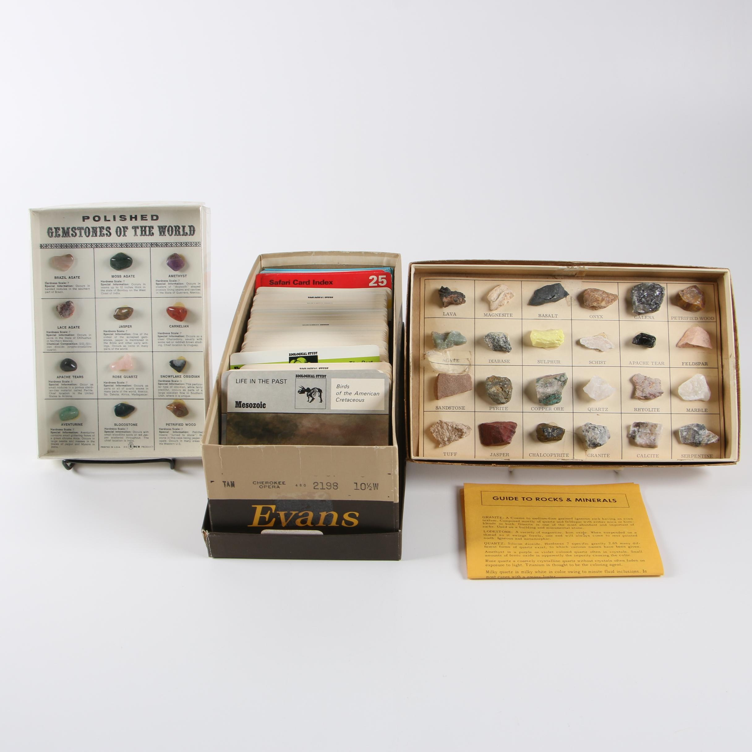 Rock, Mineral and Gemstone Displays with Informational Animal and Nature Cards