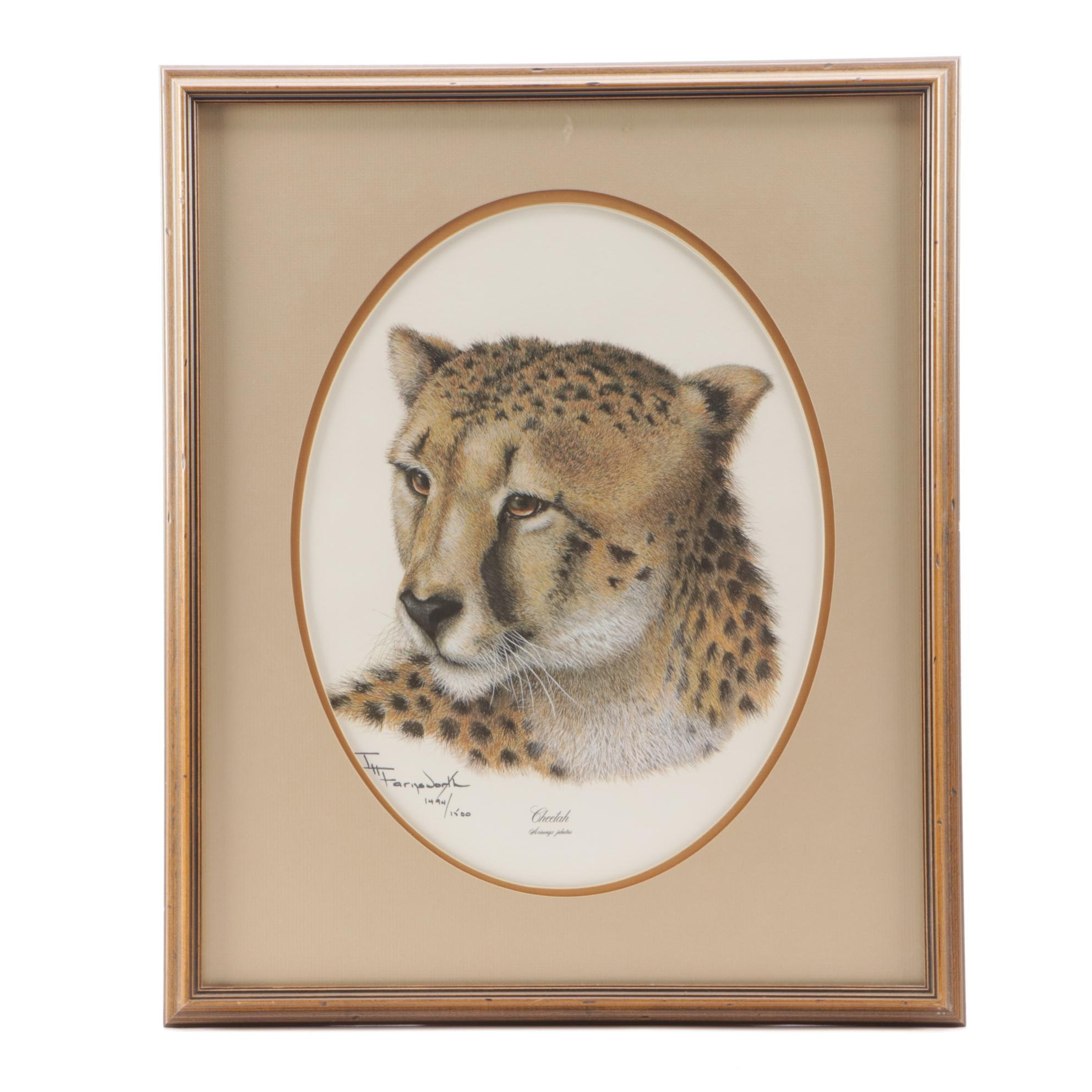 "Imogene Farnsworth Limited Edition Offset Lithograph ""Cheetah"""