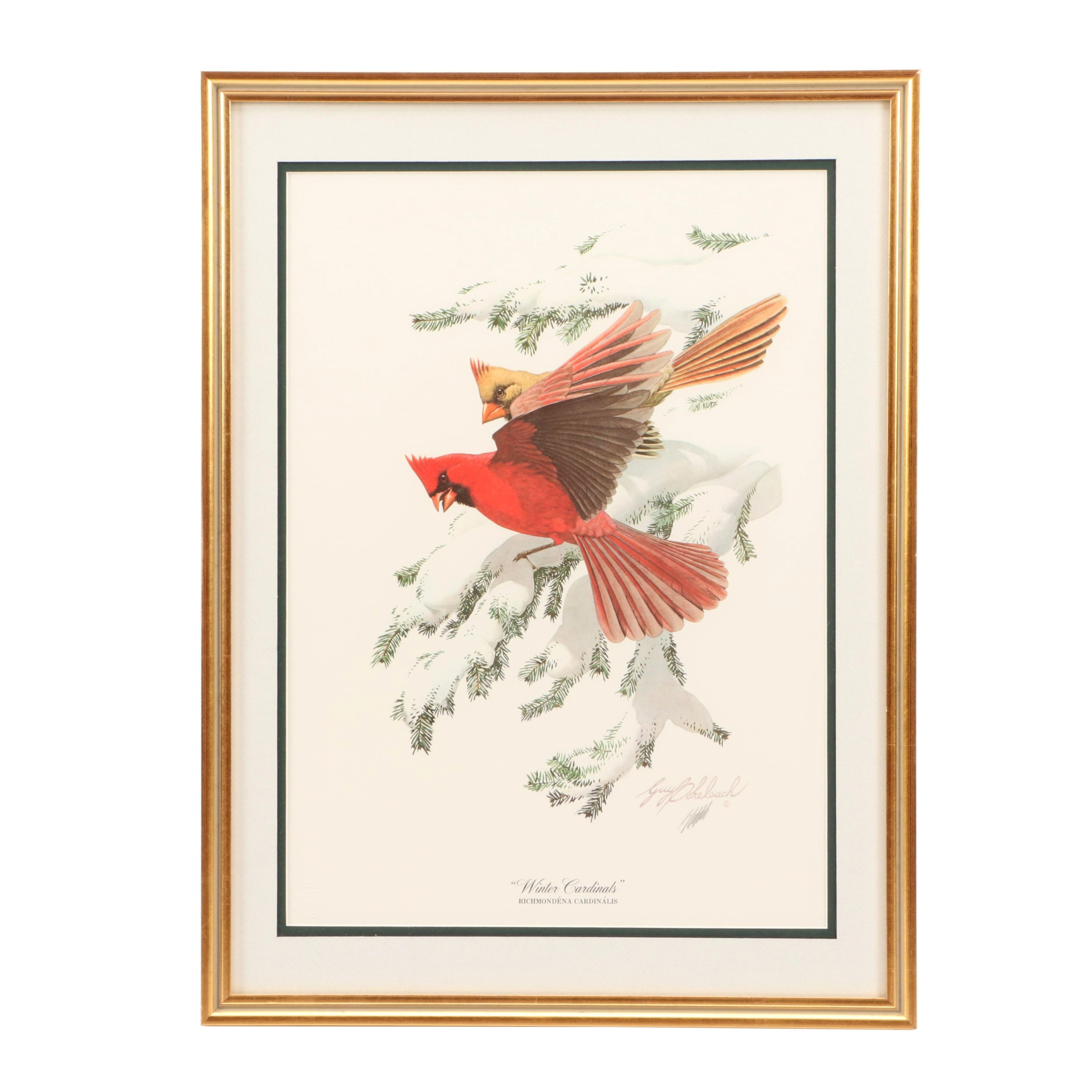 "Guy Coheleach Offset Lithograph ""Winter Cardinals"""