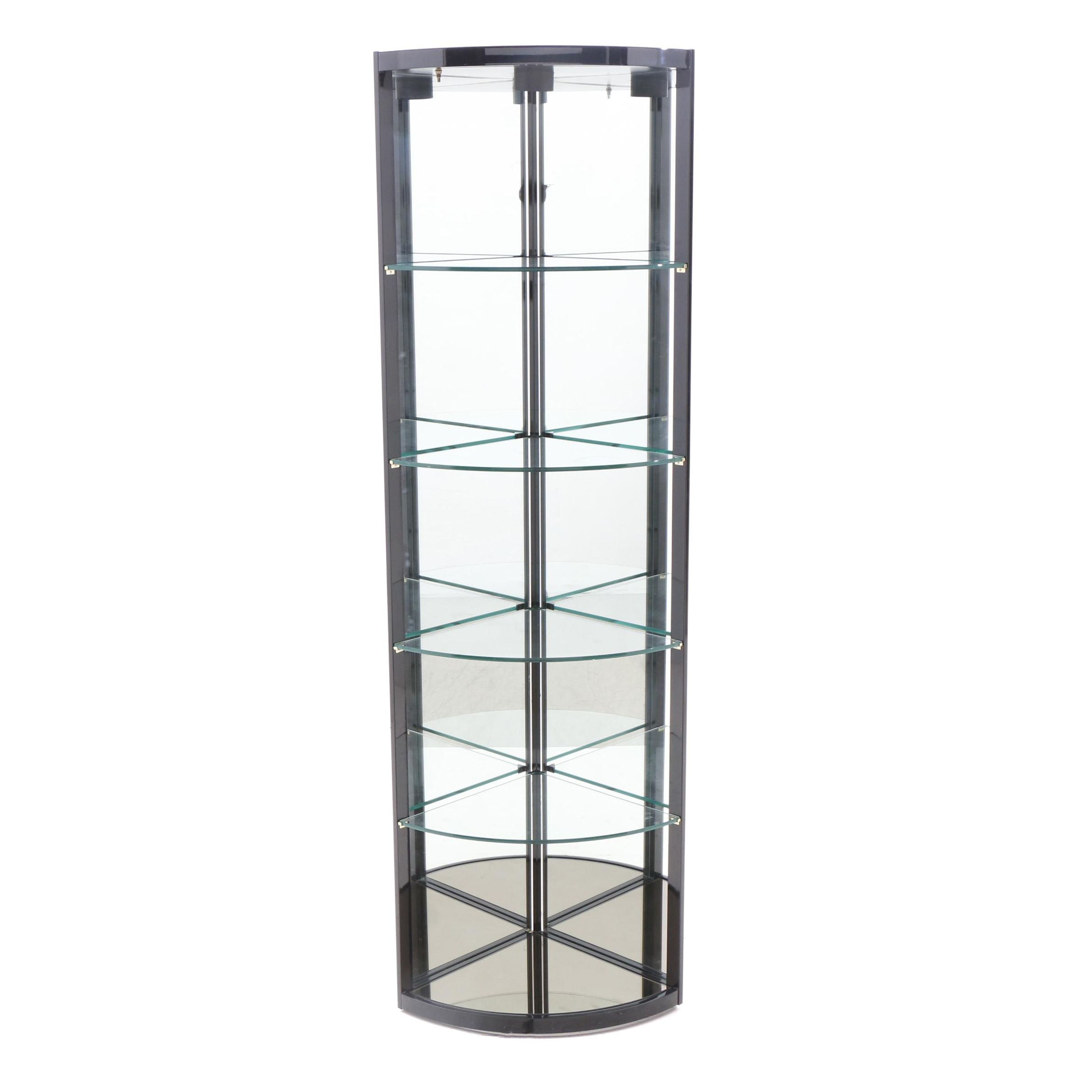 Contemporary Glass and Metal Illuminated Curio Cabinet