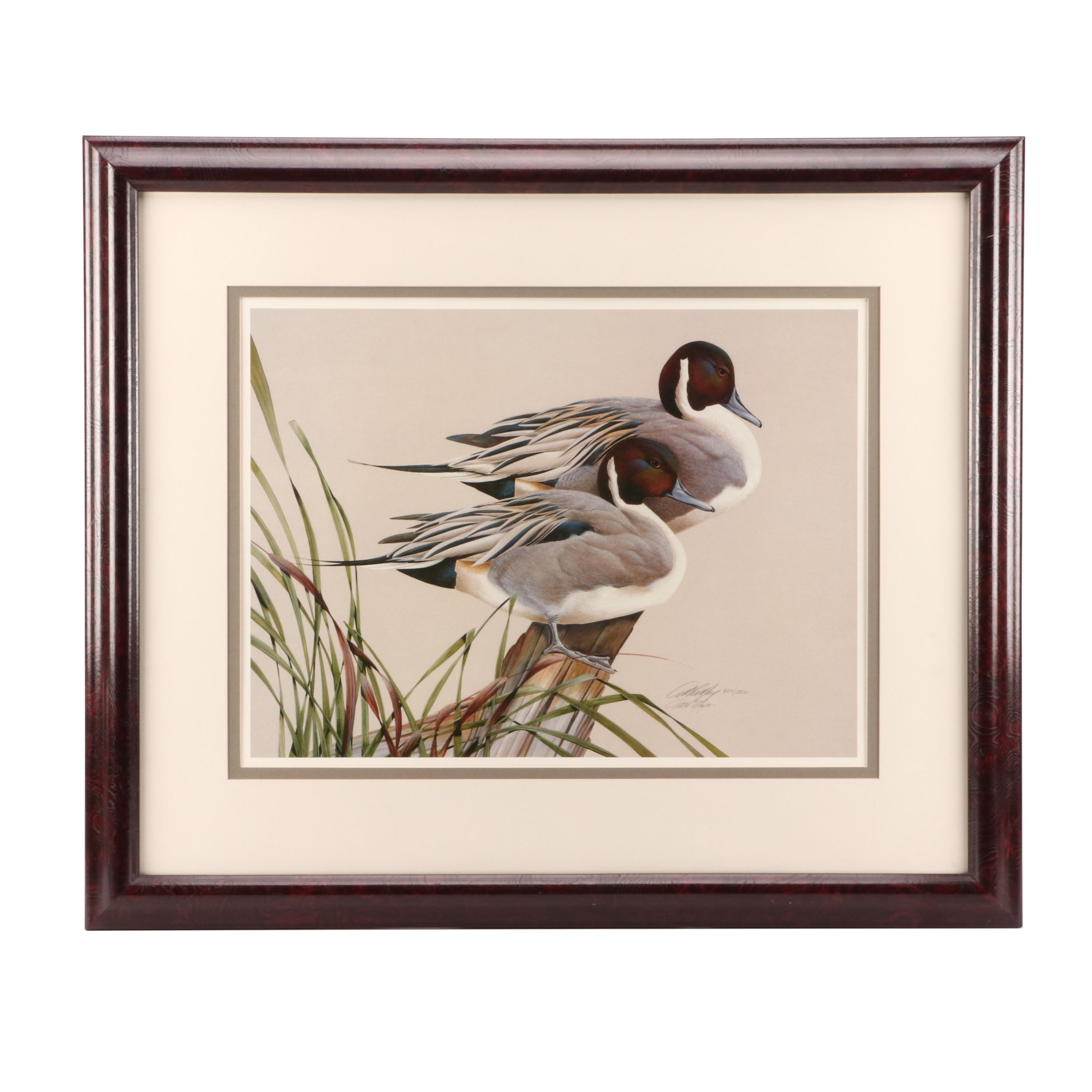 """Art LaMay Limited Edition Offset Lithograph """"Pintail Pals"""""""