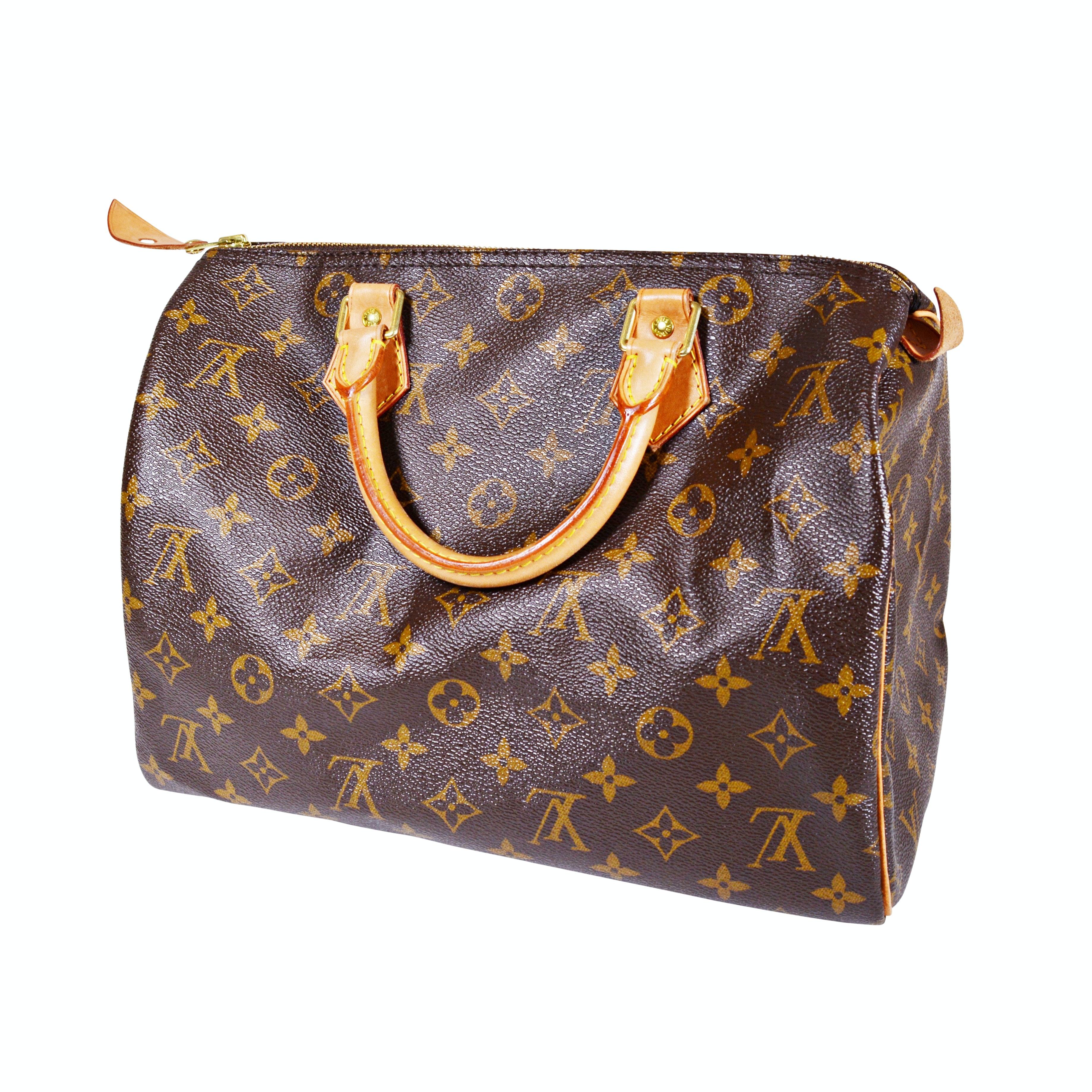 Louis Vuitton Monogram Canvas Speedy Handbag
