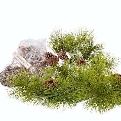 Collection of Decorative Pine Cones and Faux Branches