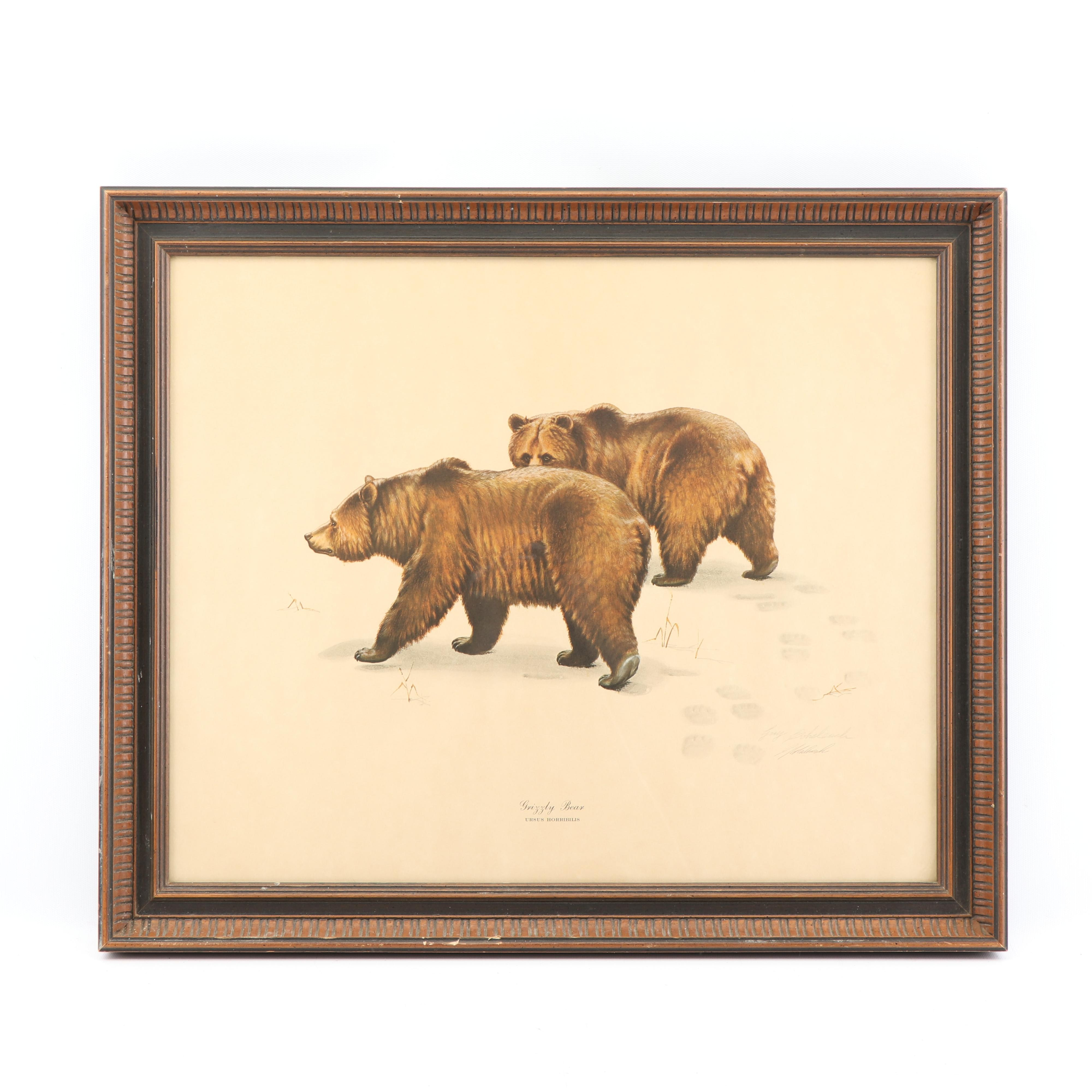 """Guy Coheleach Offset Lithograph """"Grizzly Bear"""""""