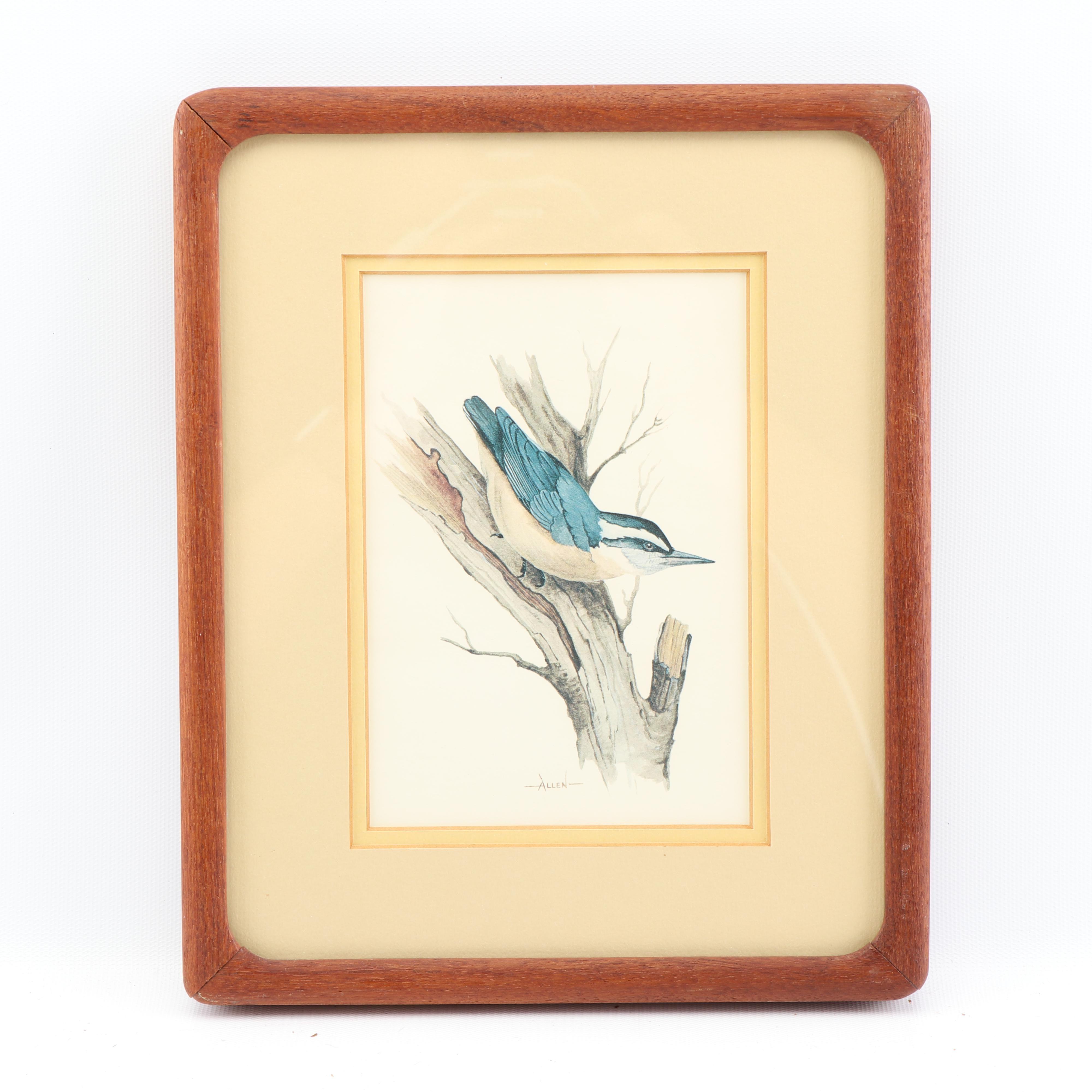Allen Offset Lithograph on Bird