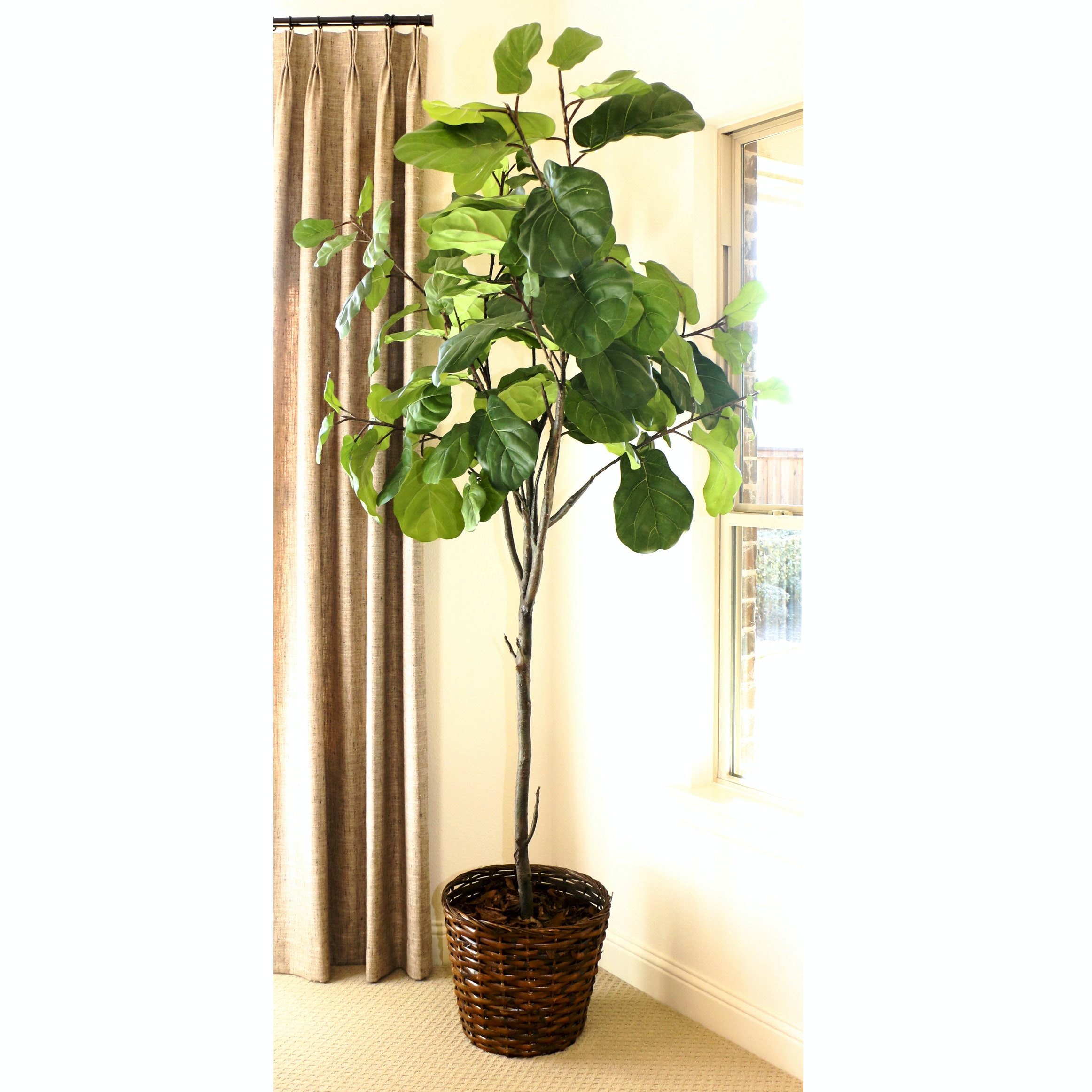 Faux Potted Fig Tree in a Woven Rattan Basket