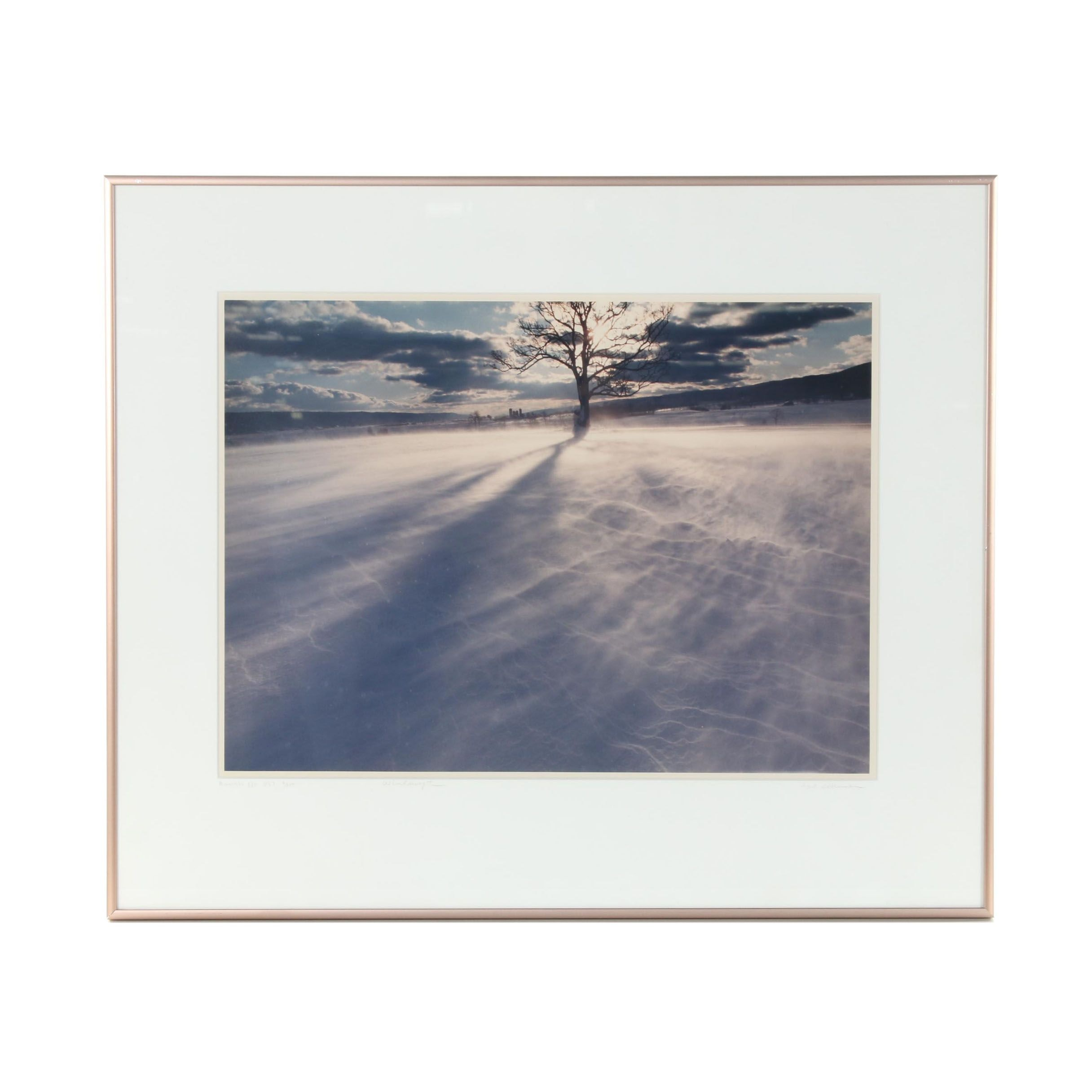 "Bill Coleman Limited Edition Photograph ""Windswept"""
