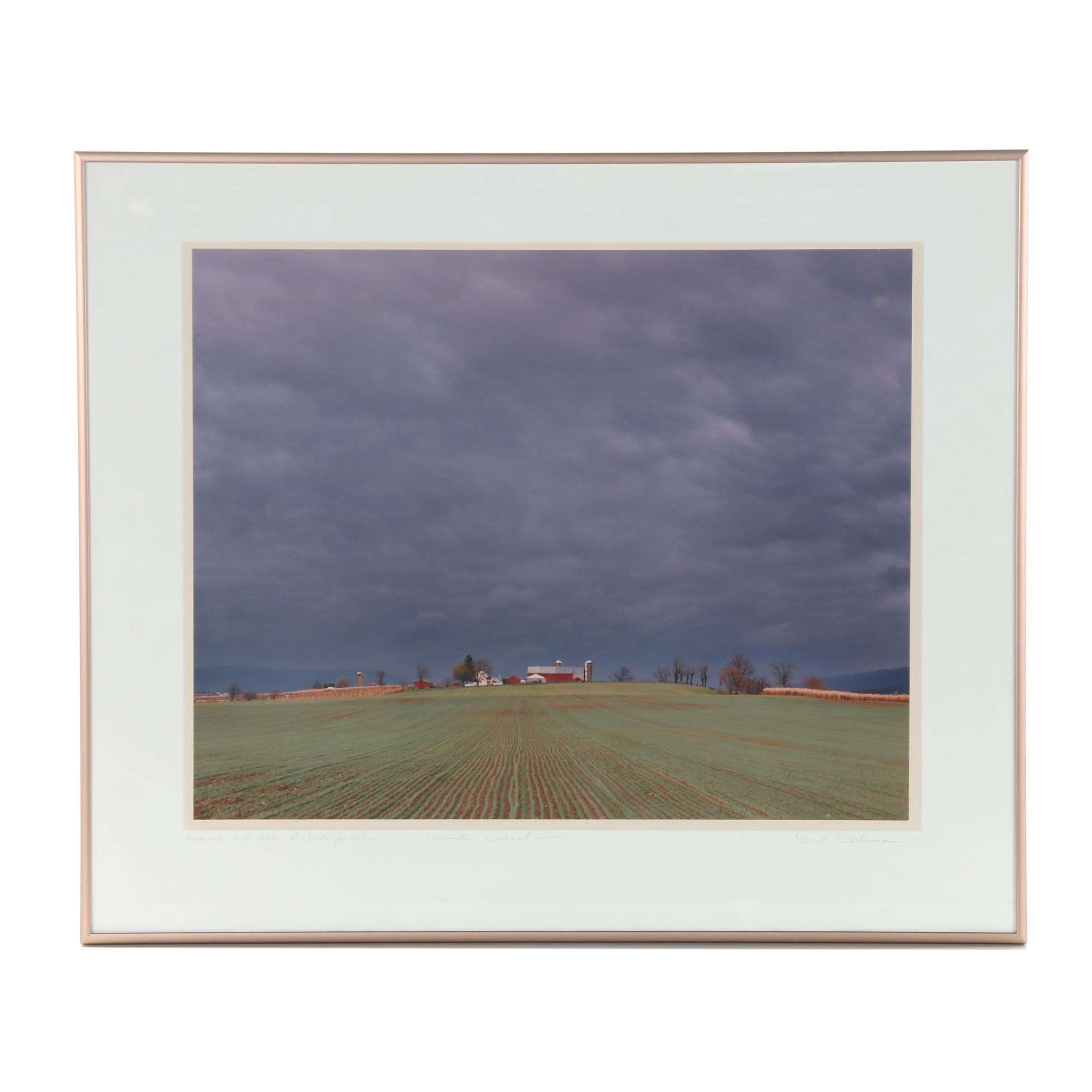 "Bill Coleman Photograph ""Winter Wheat"""