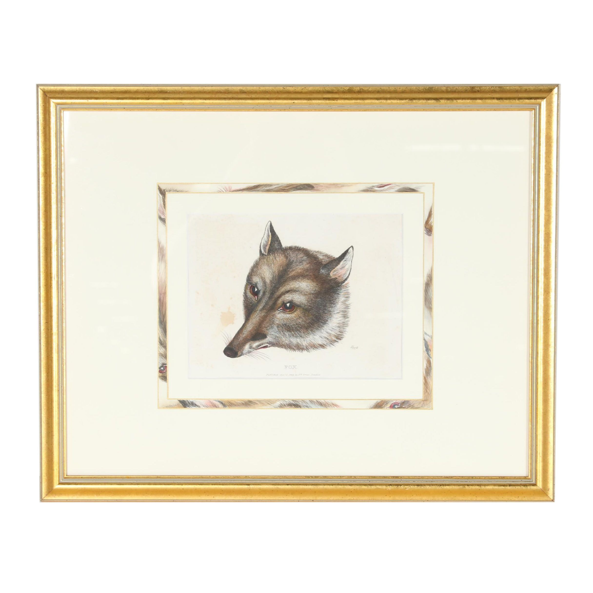"""Hand-Colored Etching after Samuel Howitt """"Fox"""""""